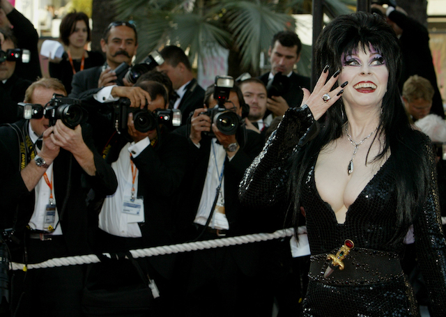Gothic actress Elvira poses for photographers during red-carpet arrivals at the 56th International Film Festival in Cannes, May 17, 2003. The French Riviera town of Cannes comes to life during the 12-day festival with movie premieres, deal-making and parties. REUTERS/Vincent Kessler