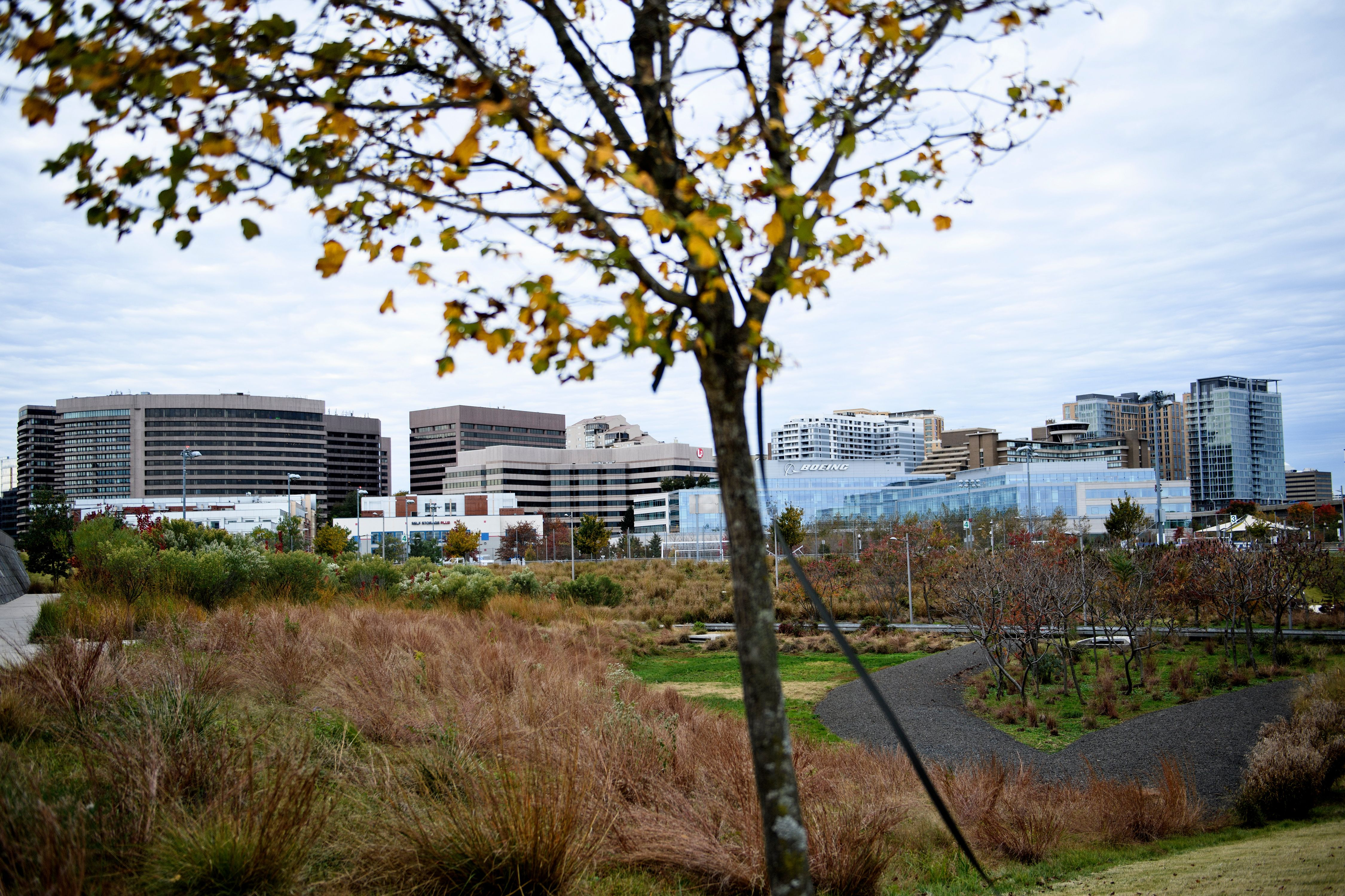 A view of the Crystal City section, one of the possible locations for Amazon's second headquarters is seen on November 7, 2018 in Arlington, Virginia. BRENDAN SMIALOWSKI/AFP/Getty Images