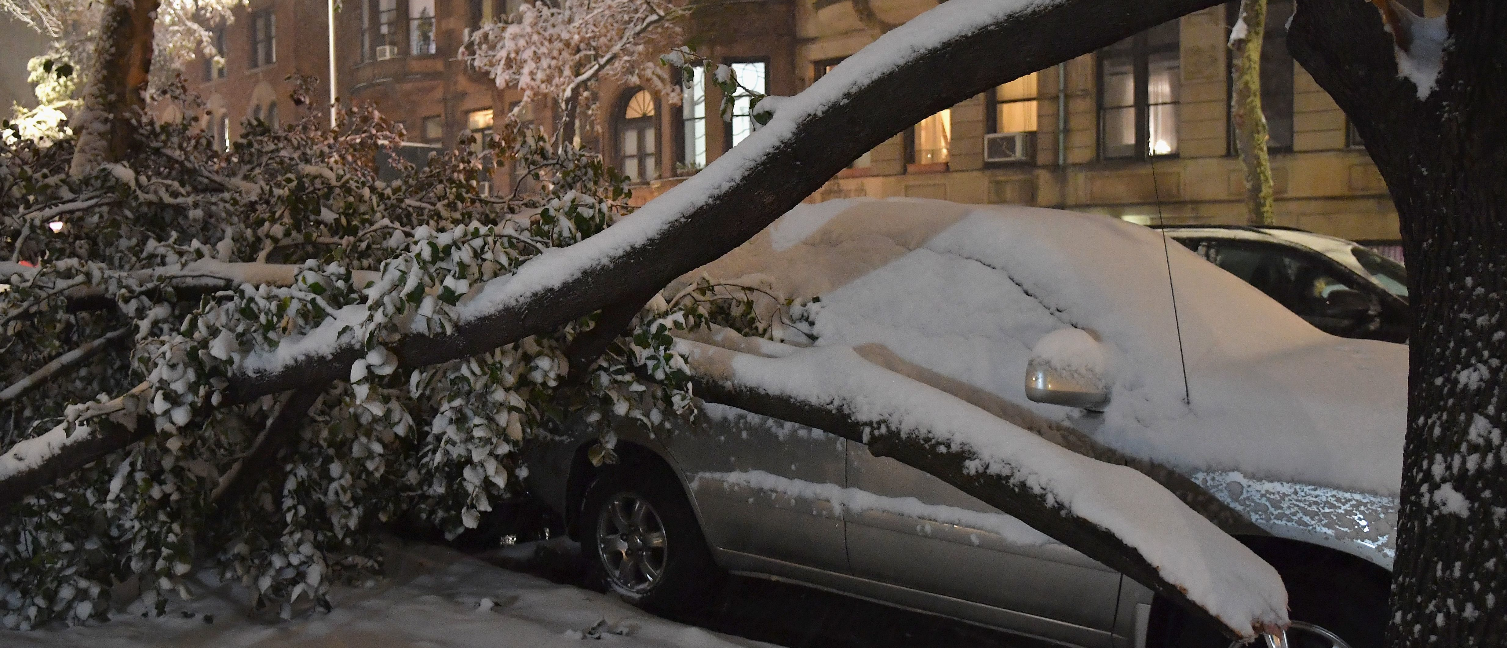A tree collapsed on top of a parked car in Manhattan on November 15, 2018 in New York. - The National Weather Service is predicting snowfall totals of 2 to 4 inches in New York City. (Photo by Angela Weiss / AFP) (Photo credit should read ANGELA WEISS/AFP/Getty Images)