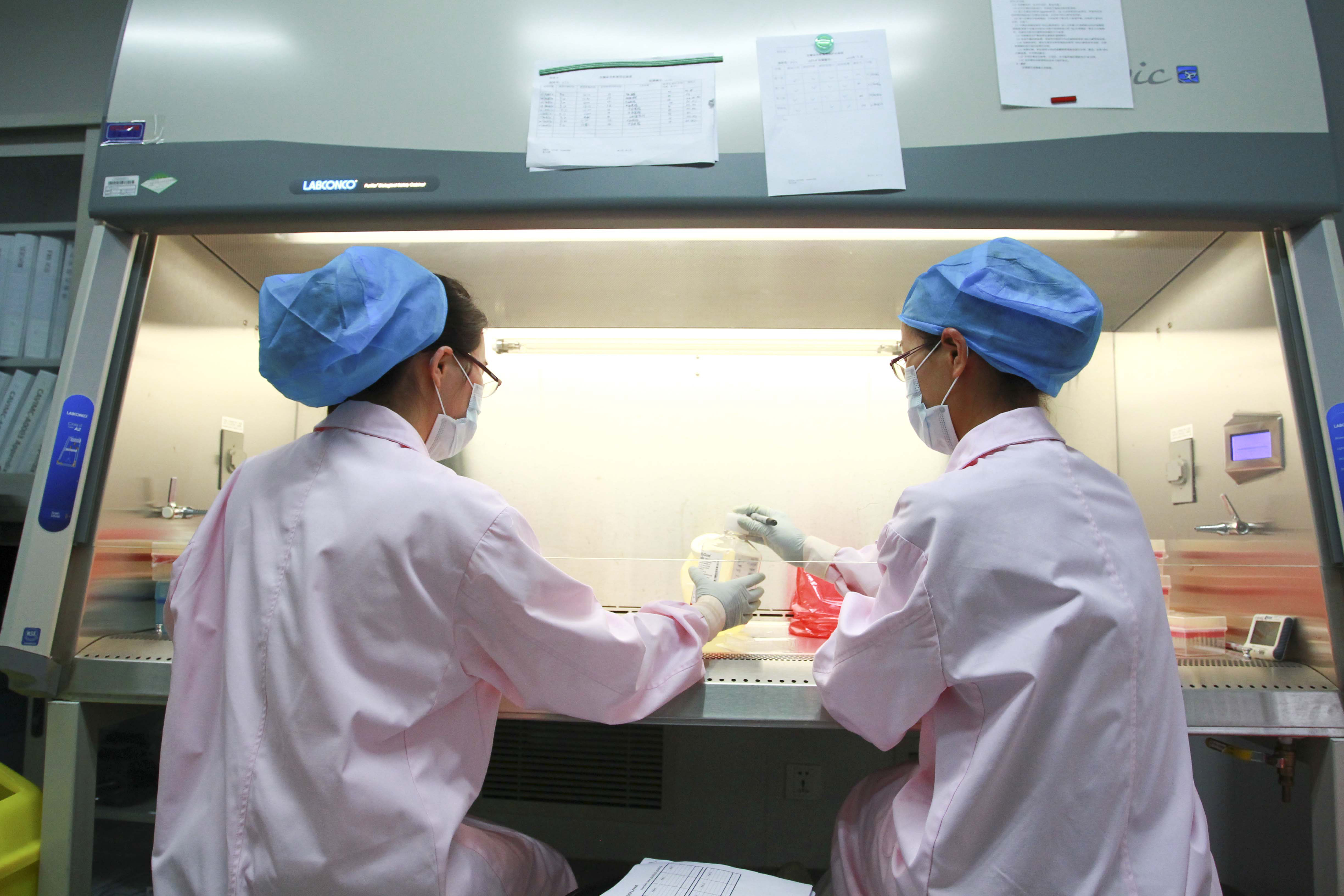 This photo taken on August 22, 2012, shows researchers working inside a laboratory of the National Center for AIDS/STD Prevention and Control (NCAIDS), a branch of the Chinese Center For Disease Control. STR/AFP/Getty Images