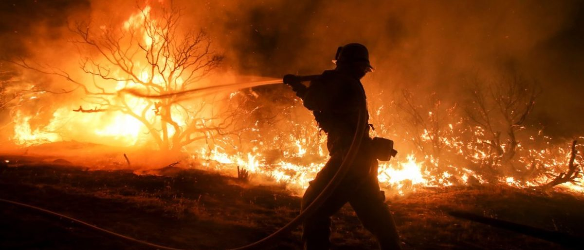 """A rapidly spreading fire raging east of Los Angeles forced the evacuation of more than 82,000 people on August 16 as the governor of California declared a state of emergency. Despite the efforts of 1,250 firefighters with more on the way, none of the inferno was contained as of late on August 16 , state firefighting agency Cal Fire spokeswoman Lynne Tolmachoff told AFP. The wildfire poses """"imminent threat to public safety, rail traffic and structures,"""" according to the website, which said 82,640 people fell under an evacuation warning. / AFP / RINGO CHIU"""