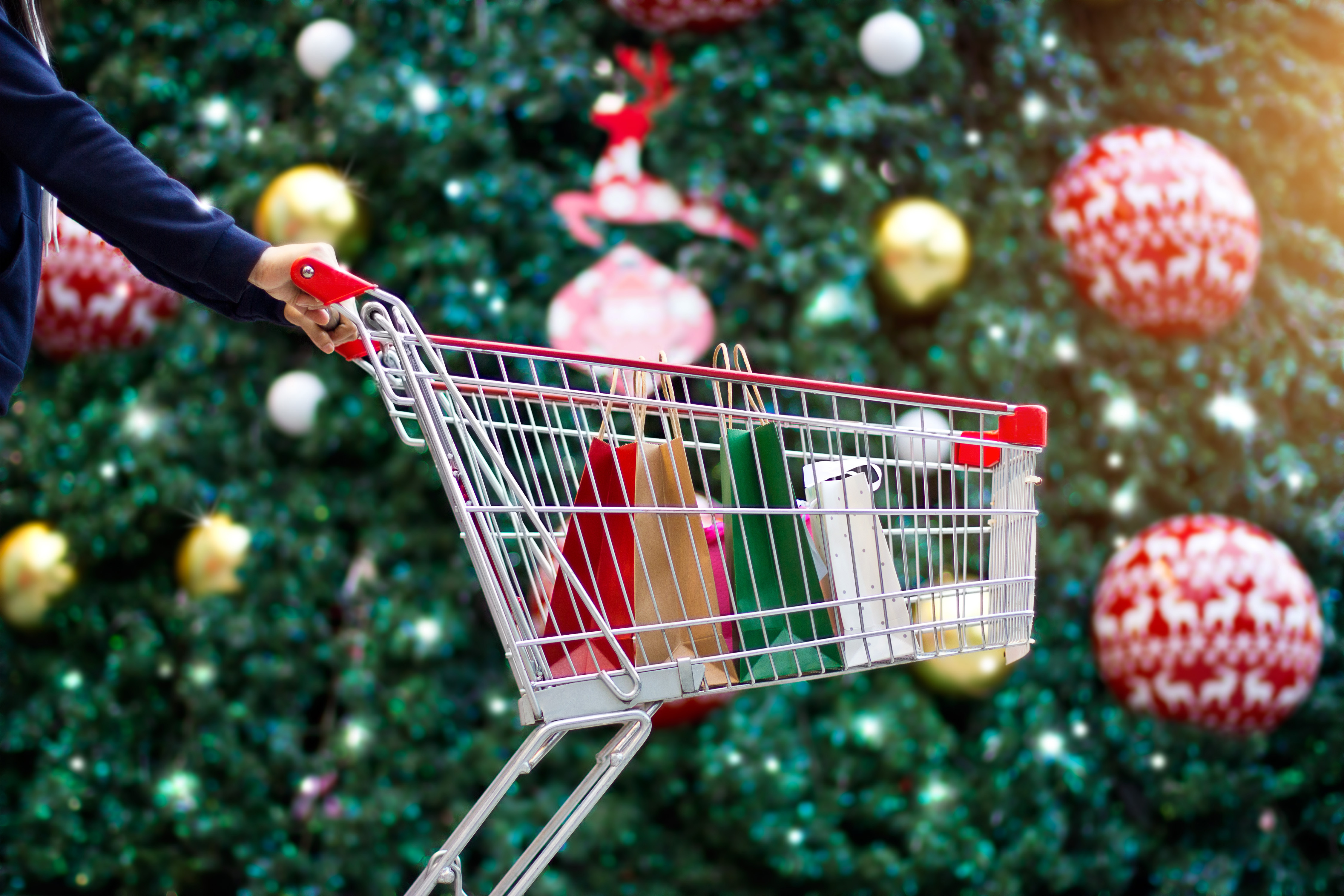 Pictured is a shopping cart with bags. SHUTTERSTOCK/ PopTika