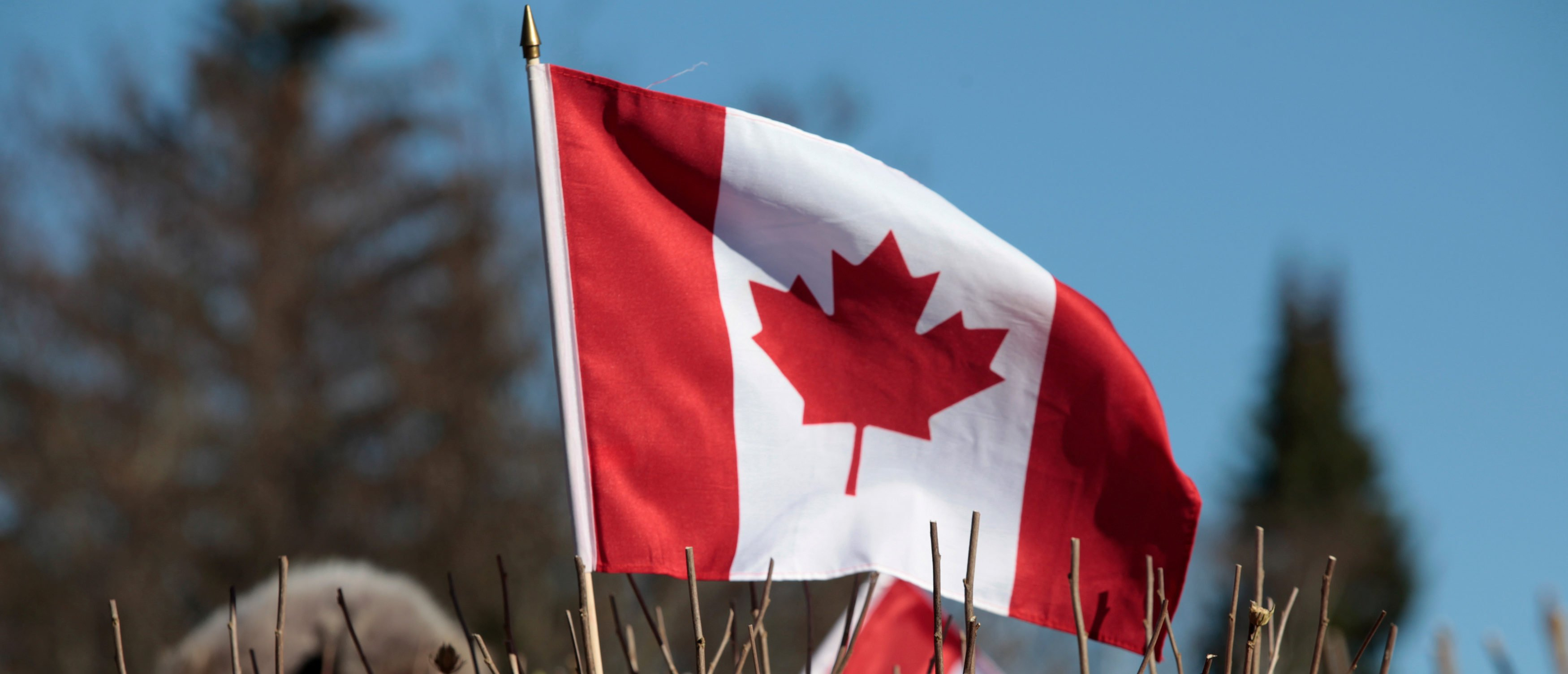 REPORT: No Warming Trend At Three-Quarters Of Canada's Long-Term Weather Stations