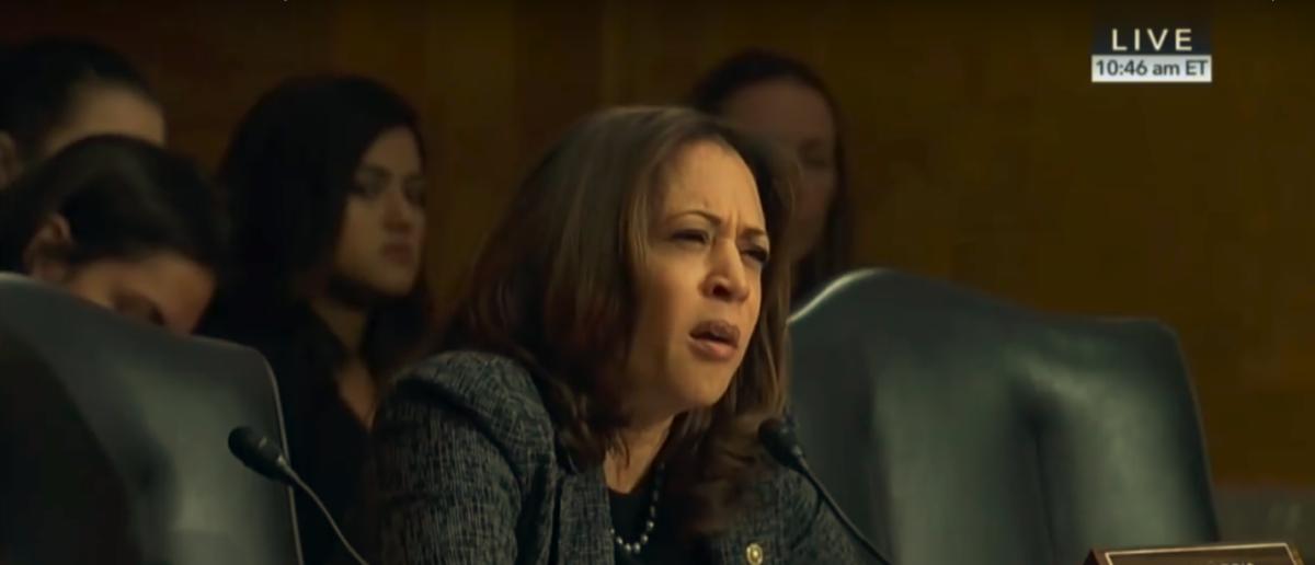 Senator Kamala Harris attempts to draw parallels between ICE and the KKK during a committee hearing (PHOTO:Screenshot/GOPWarRoom)
