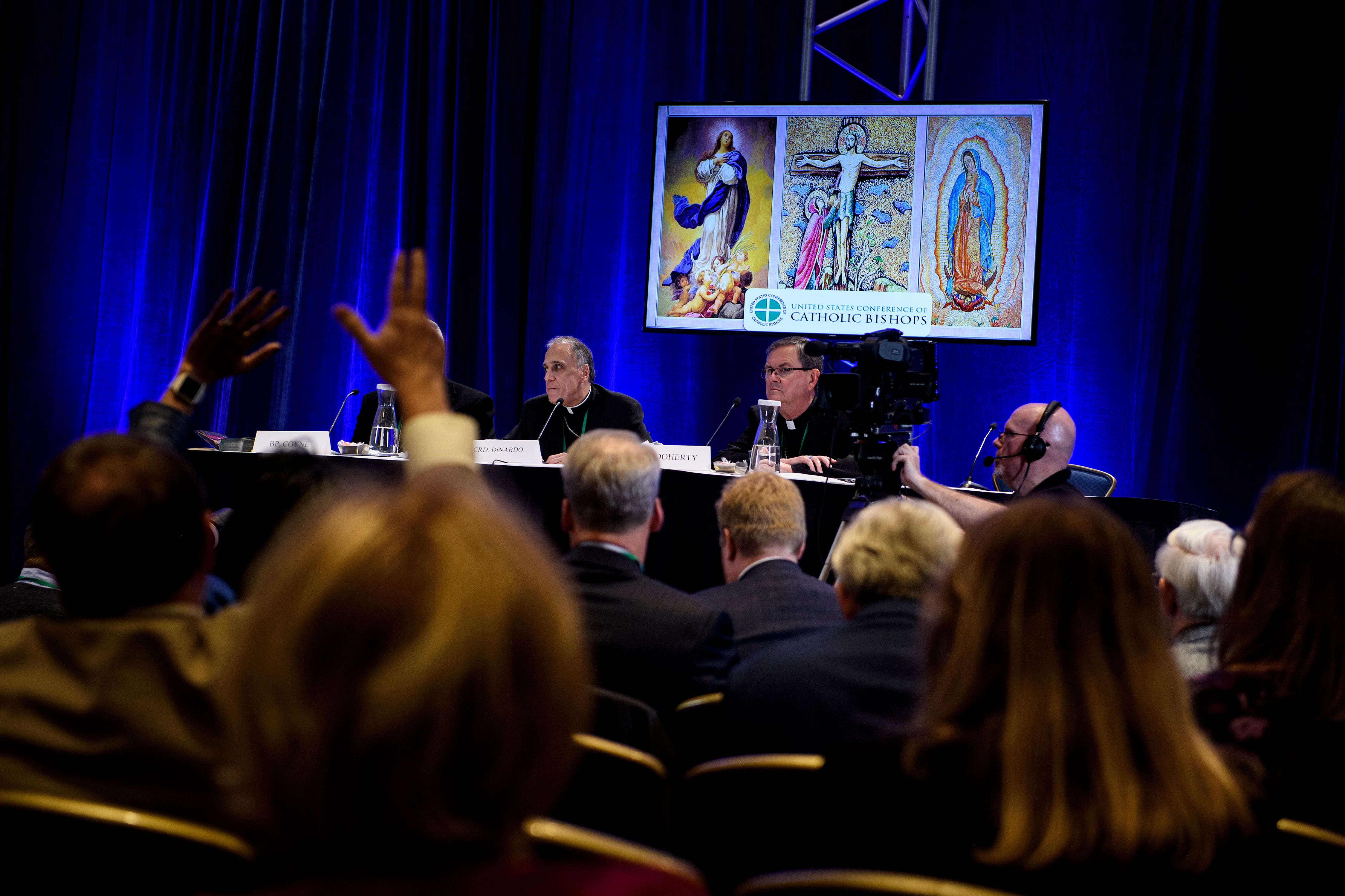 Galveston-Houston Cardinal Daniel DiNardo, President of the USCCB General Assembly, takes questions during a press conference at the annual US Conference of Catholic Bishops November 12, 2018 in Baltimore, Maryland. (BRENDAN SMIALOWSKI/AFP/Getty Images)