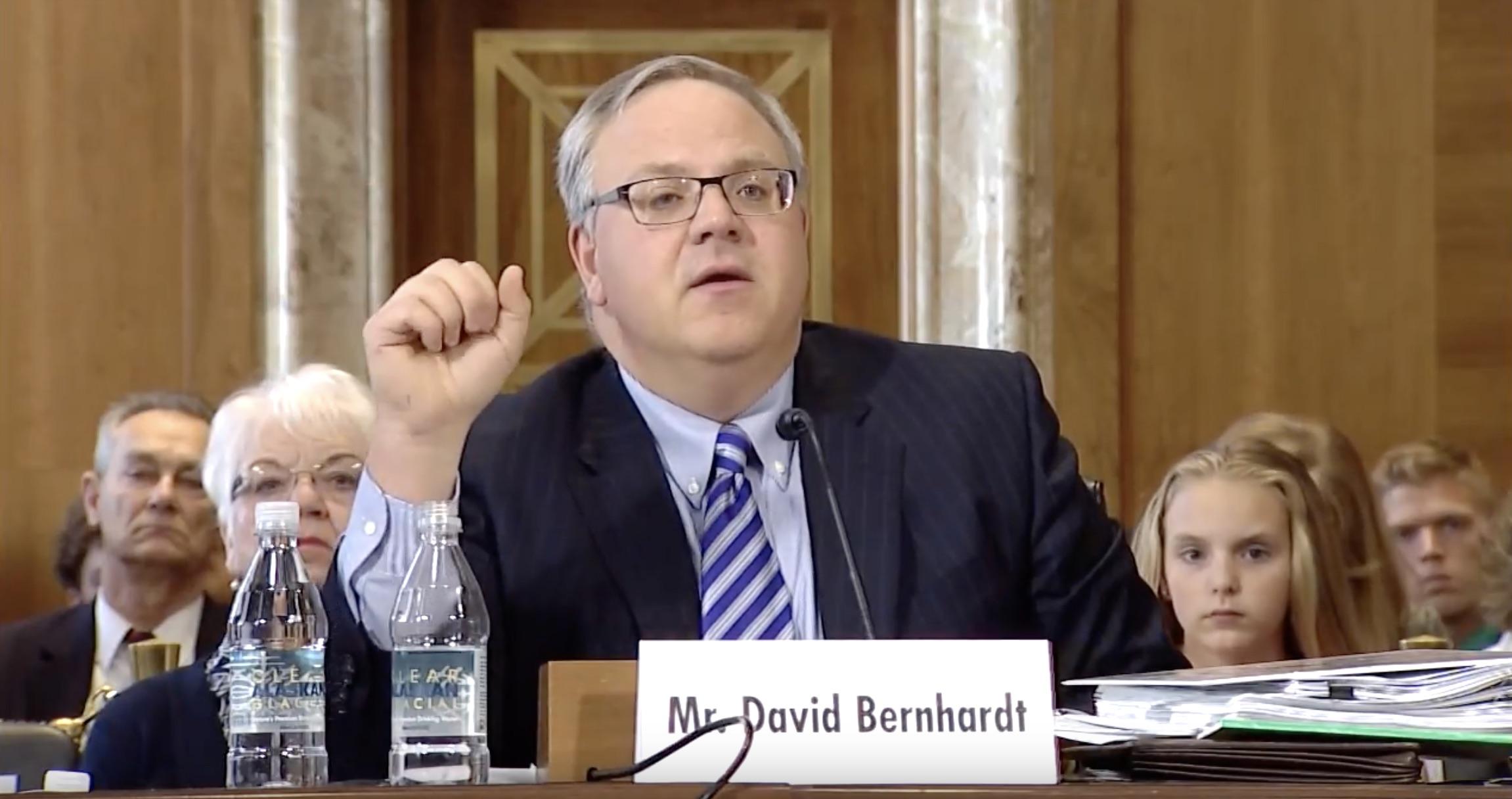 David Bernhardt testifies in front of Senate Energy and Natural Resources Committee. (Youtube/SenateEnergy/Screenshot)