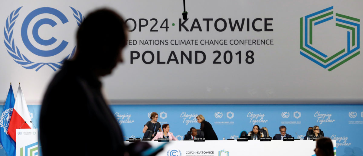 A participant's shilouette is seen during the COP24 UN Climate Change Conference 2018 in Katowice, Poland December 2, 2018. REUTERS/Kacper Pempel.