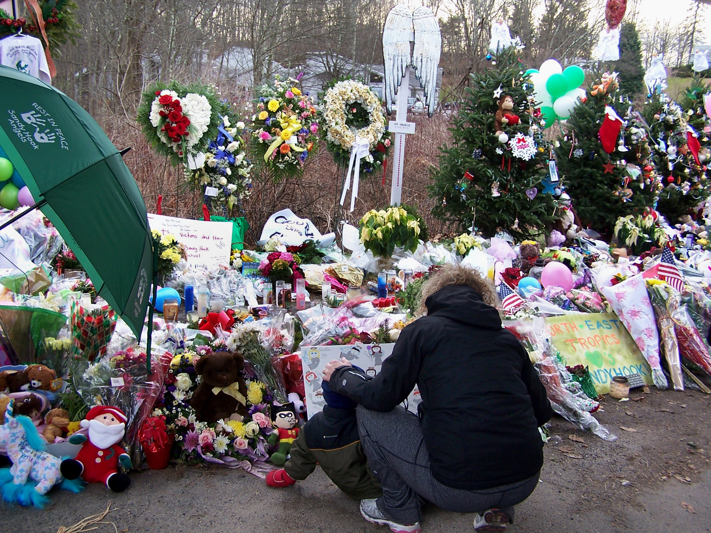 Connecticut Supreme Court Rules to Allow Sandy Hook Relatives to Sue Gunmakers