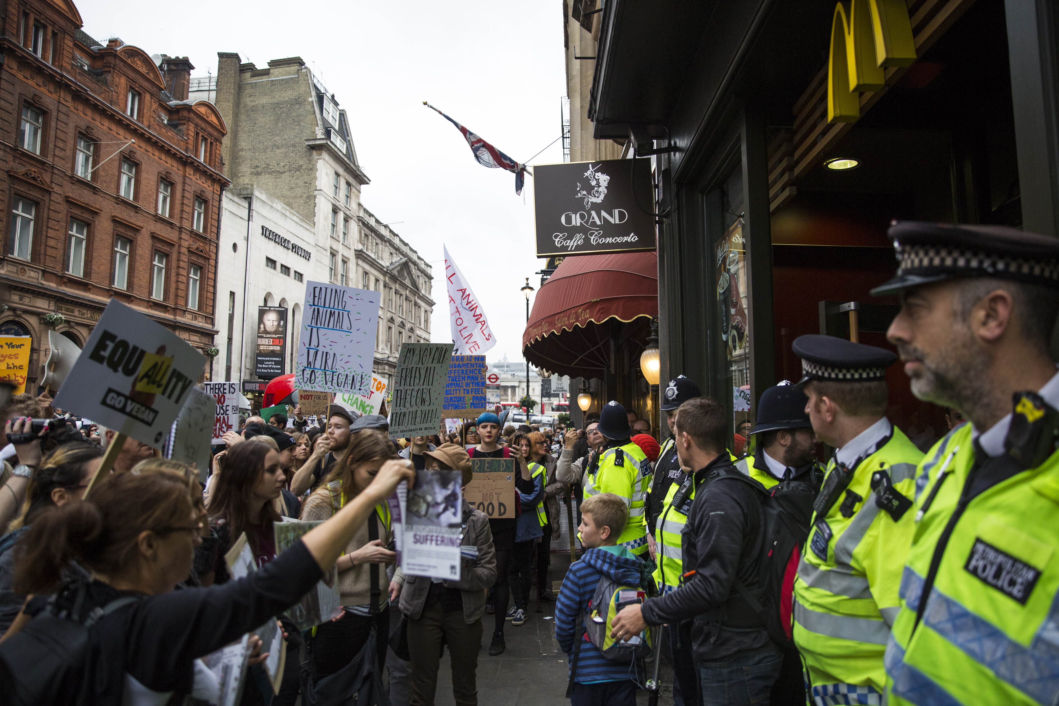 LONDON, ENGLAND - OCTOBER 29: Protesters wave placards during an animal rights march outside McDonald's restaurant on Whitehall on October 29, 2016 in London, England. Hundreds of protesters and activists march through central London today calling for greater animal rights and encouraging people to go vegan. (Photo by Jack Taylor/Getty Images)