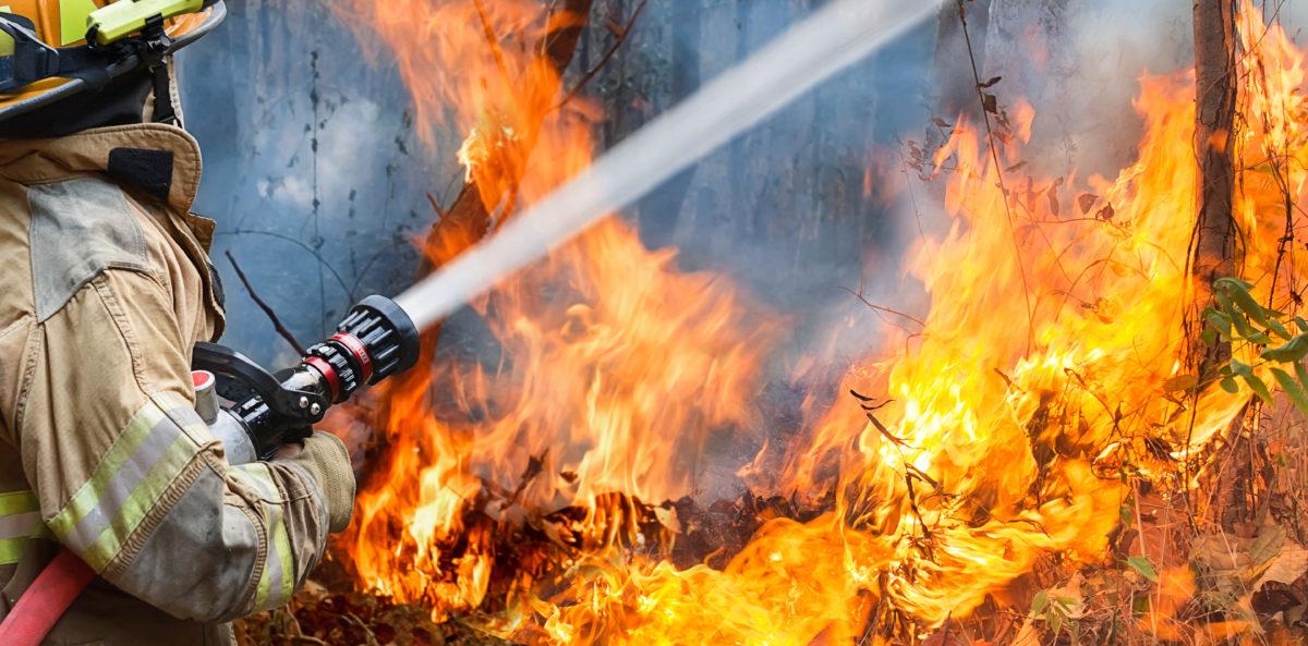 Firefighters spray water to wildfire. Shutterstock