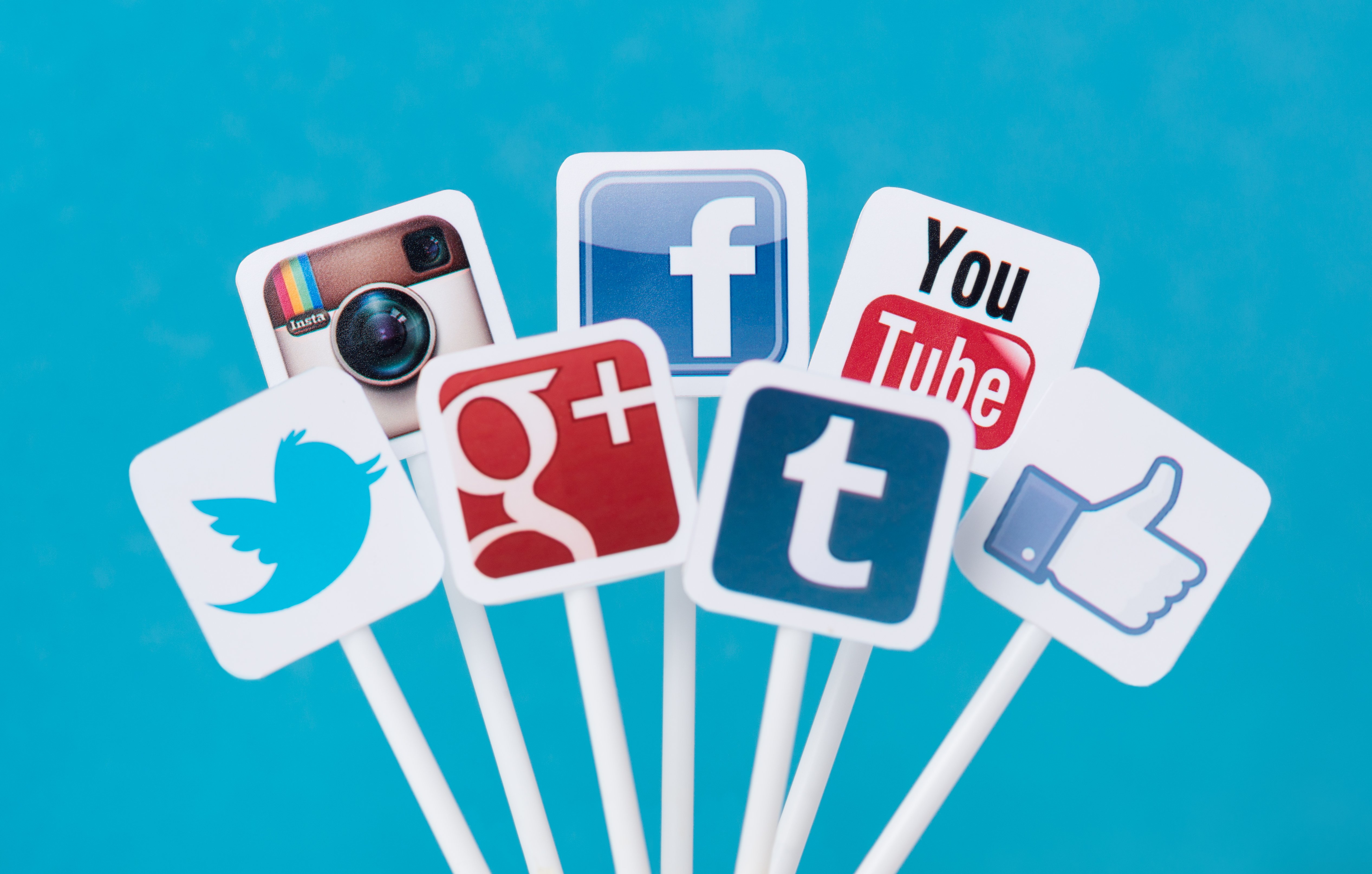 Pictured are various social media platforms. SHUTTERSTOCK/ Bloomicon
