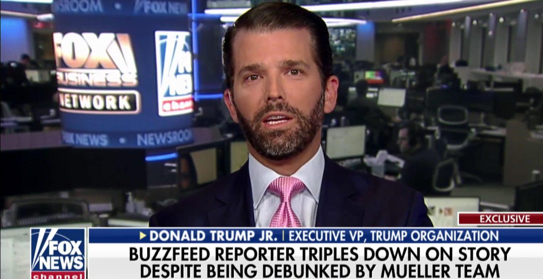 "Donald Trump, Jr. discusses the mainstream media on ""The Ingraham Angle,"" Jan. 21, 2019. Fox News screenshot."