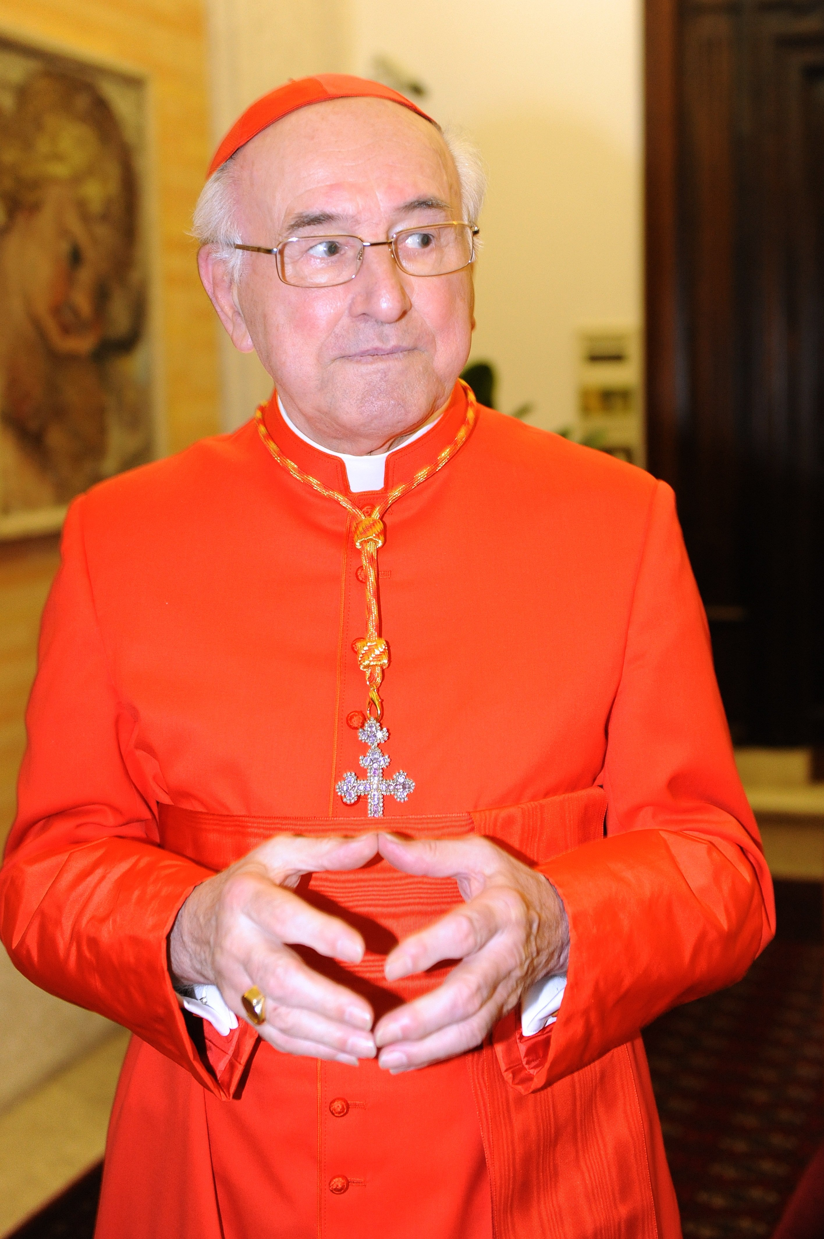 Newly appointed cardinal from germany Walter Brandmueller (C) greets visitors during the traditionnal courtesy visit after the consistory on November 20, 2010 at The Vatican. (GIUSEPPE CACACE/AFP/Getty Images)