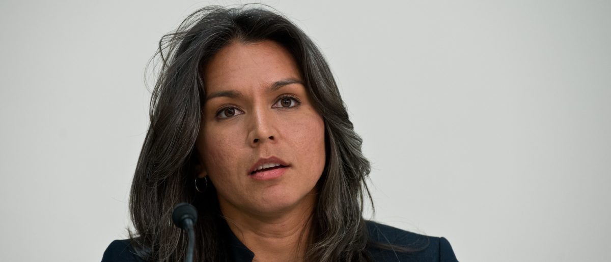 Gay Lawmaker Comes To Tulsi Gabbard's Defense Amid Backlash Over Her 'Homophobic' Past