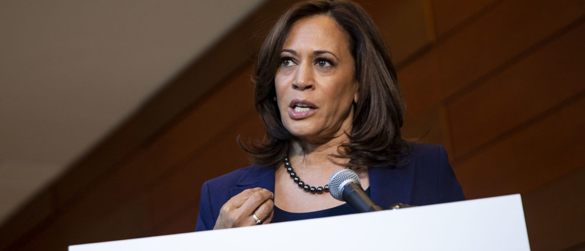 Here's How Much Kamala Harris Raised In The First 24 Hours Of Her Presidential Campaign