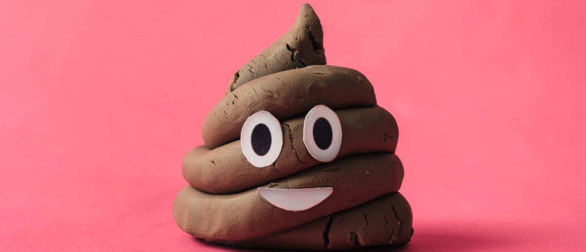 A teacher allegedly vandalized a park with feces. SHUTTERSTOCK/ Zamurovic Photography