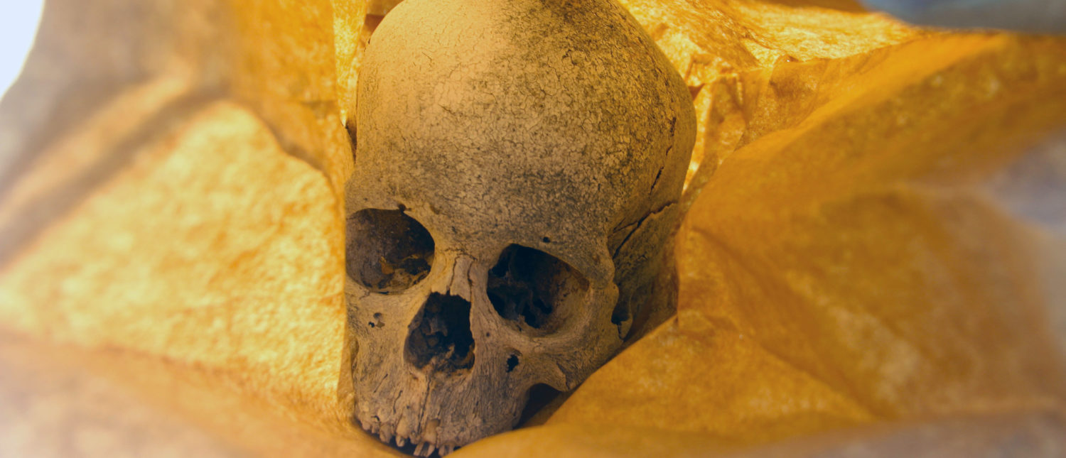 View of a human skull, that was found during a search operation by experts of General Prosecutor's Office of the state of Chihuahua in the Juarez Valley, near Ciudad Juarez, Chihuahua state, Mexico, on August 18, 2018. - (HERIKA MARTINEZ/AFP/Getty Images)
