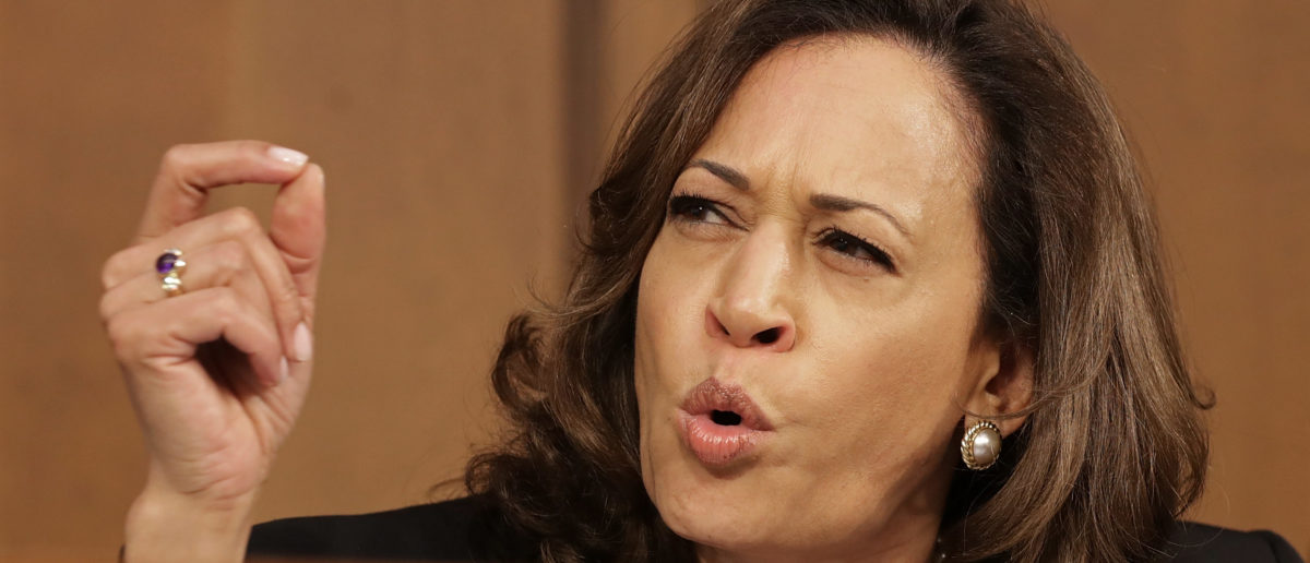 Kamala Harris's Dad Says Her Grandmothers Are 'Turning In Their Grave' Over Jamaican Heritage Pot Joke