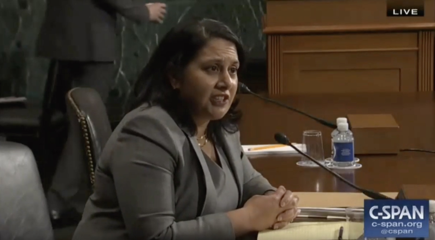 Naomi Rao sits before the Senate Judiciary Committee during a hearing on her nomination to the D.C. Circuit Court. YouTube/Screenshot/Spartacus Sputters In Failed Attempt To Criticize Judicial Nominee