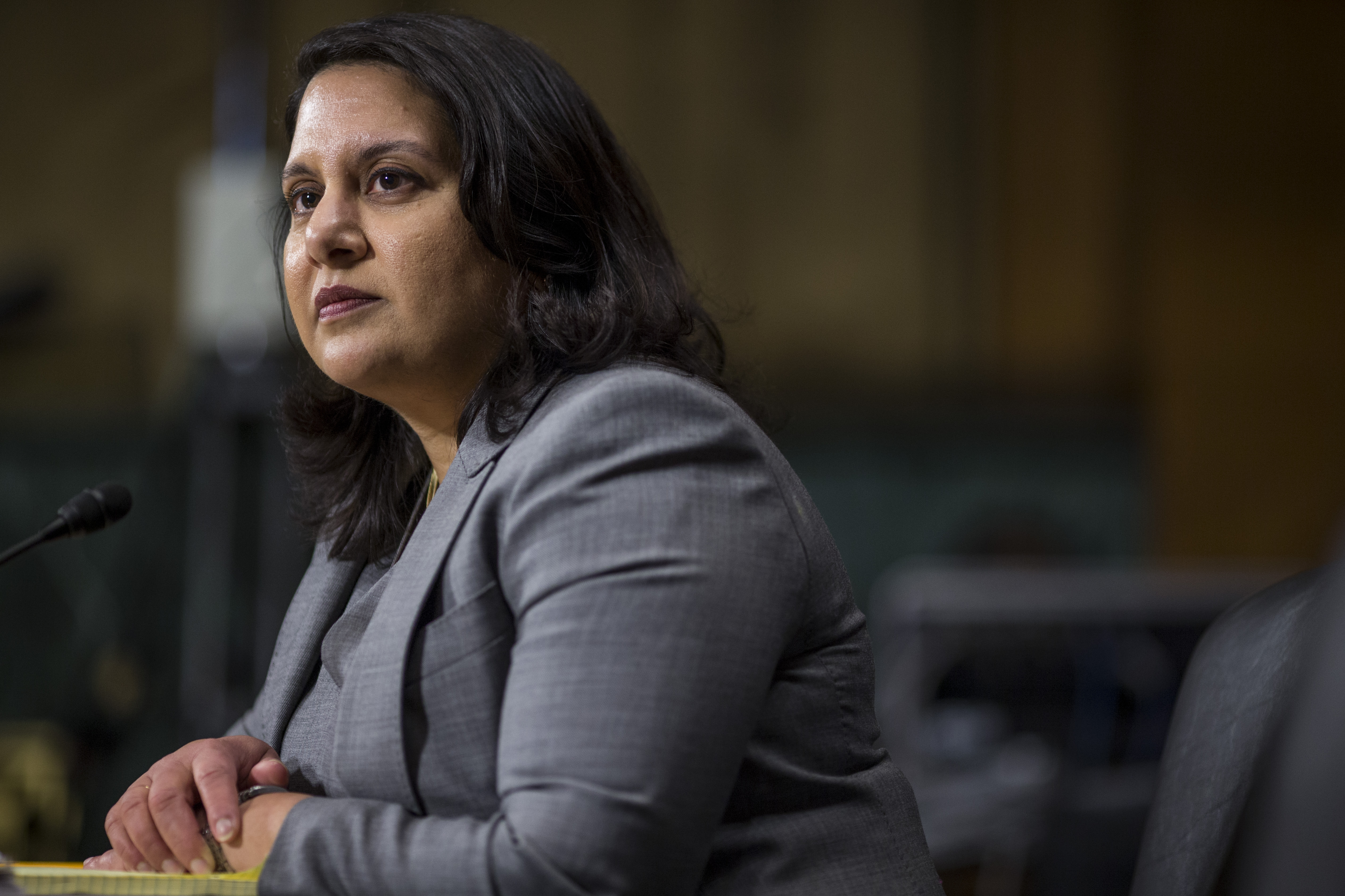 Neomi Rao, President Donald Trump's nominee for the U.S. Court of Appeals for the D.C. Circuit, testifies during a Senate Judiciary confirmation hearing on February 5, 2019. (Zach Gibson/Getty Images)