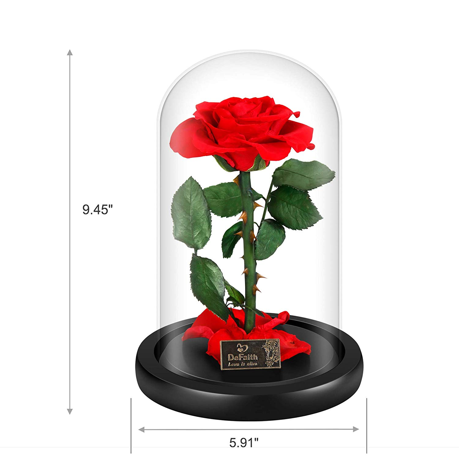 Iconic Beauty and the Beast Enchanted Rose now 15 percent off (Photo via Amazon)
