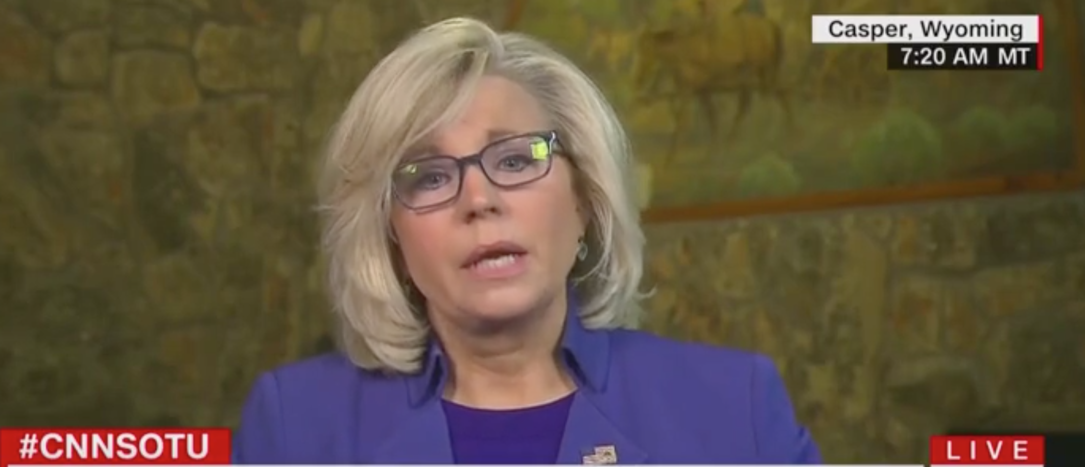 Liz Cheney Refuses To Attack Trump, Calls Warren 'A Laughingstock' Instead