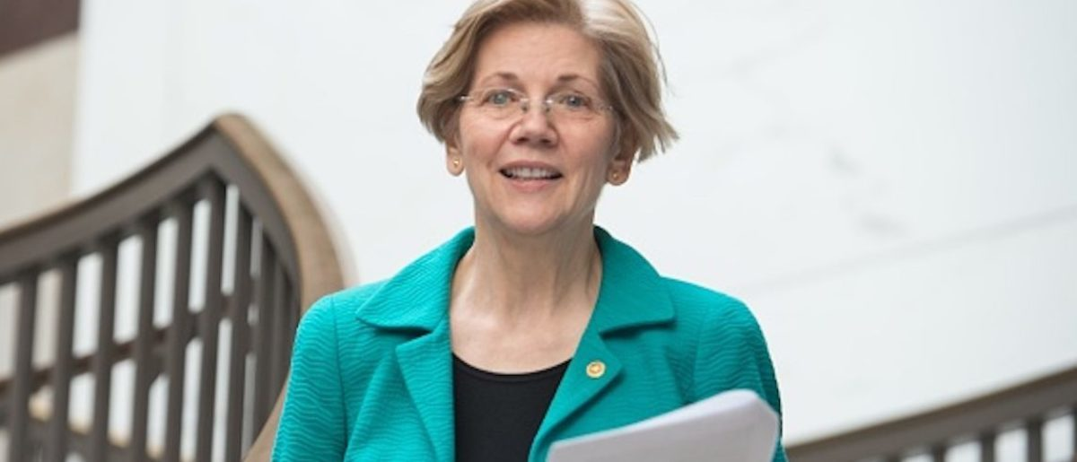 Liz Warren Gives List Of Issues For Which She Would Declare National Emergency