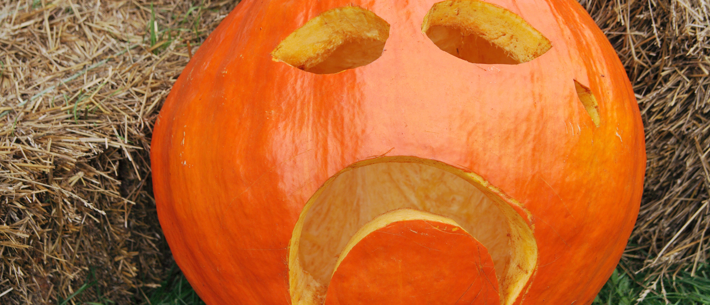 Jail Time For Trick-Or-Treaters: Chesapeake Considers Amending Infamous Policy