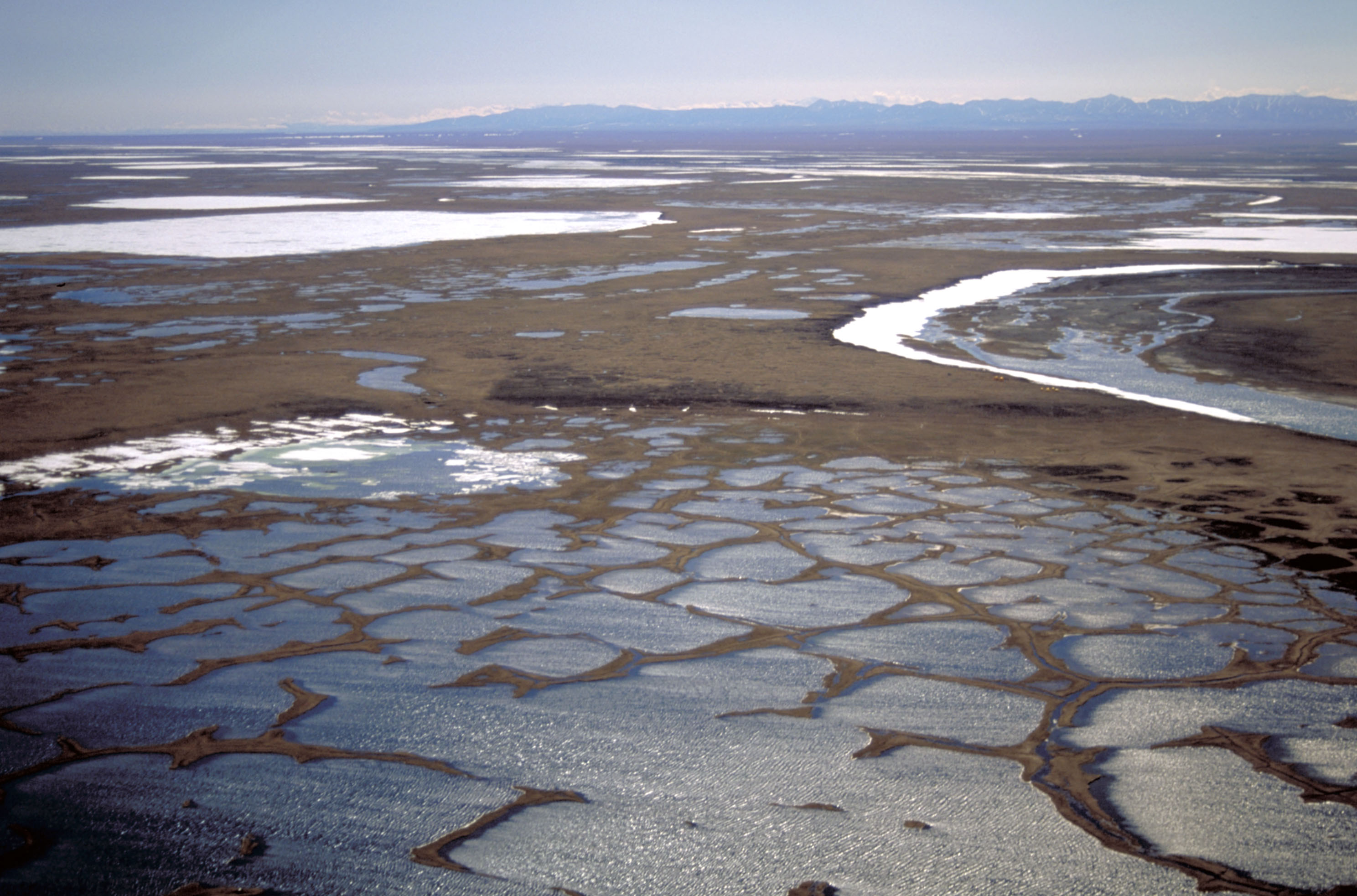 The coastal plain within the 1002 Area of the Arctic National Wildlife Refuge is seen in this undated handout photo provided by the U.S. Fish and Wildlife Service Alaska Image Library. REUTERS/HANDOUT/U.S. Fish and Wildlife Service