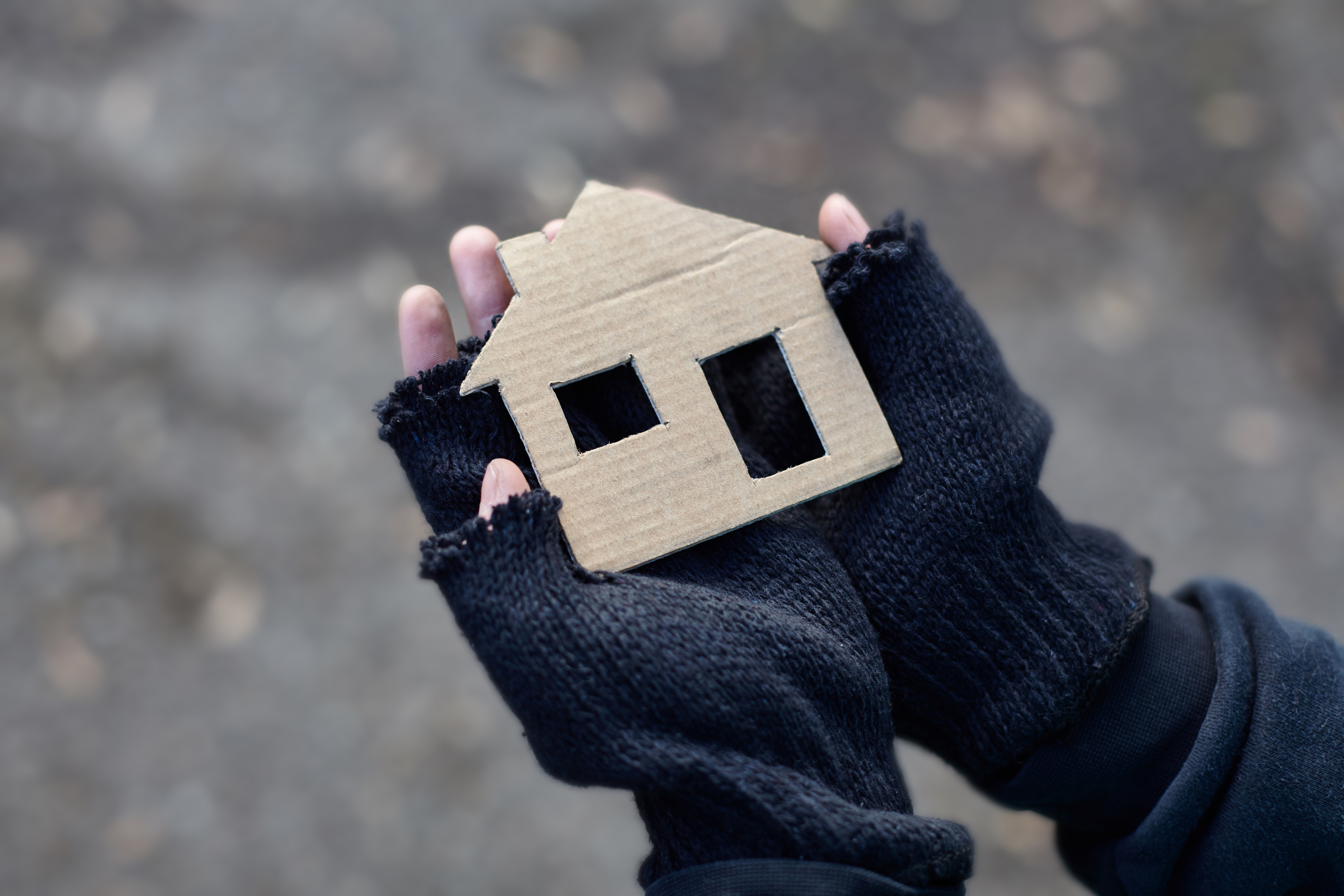 Depicted is a person wanting a home. SHUTTERSTOCK/ Roman Bodnarchuk