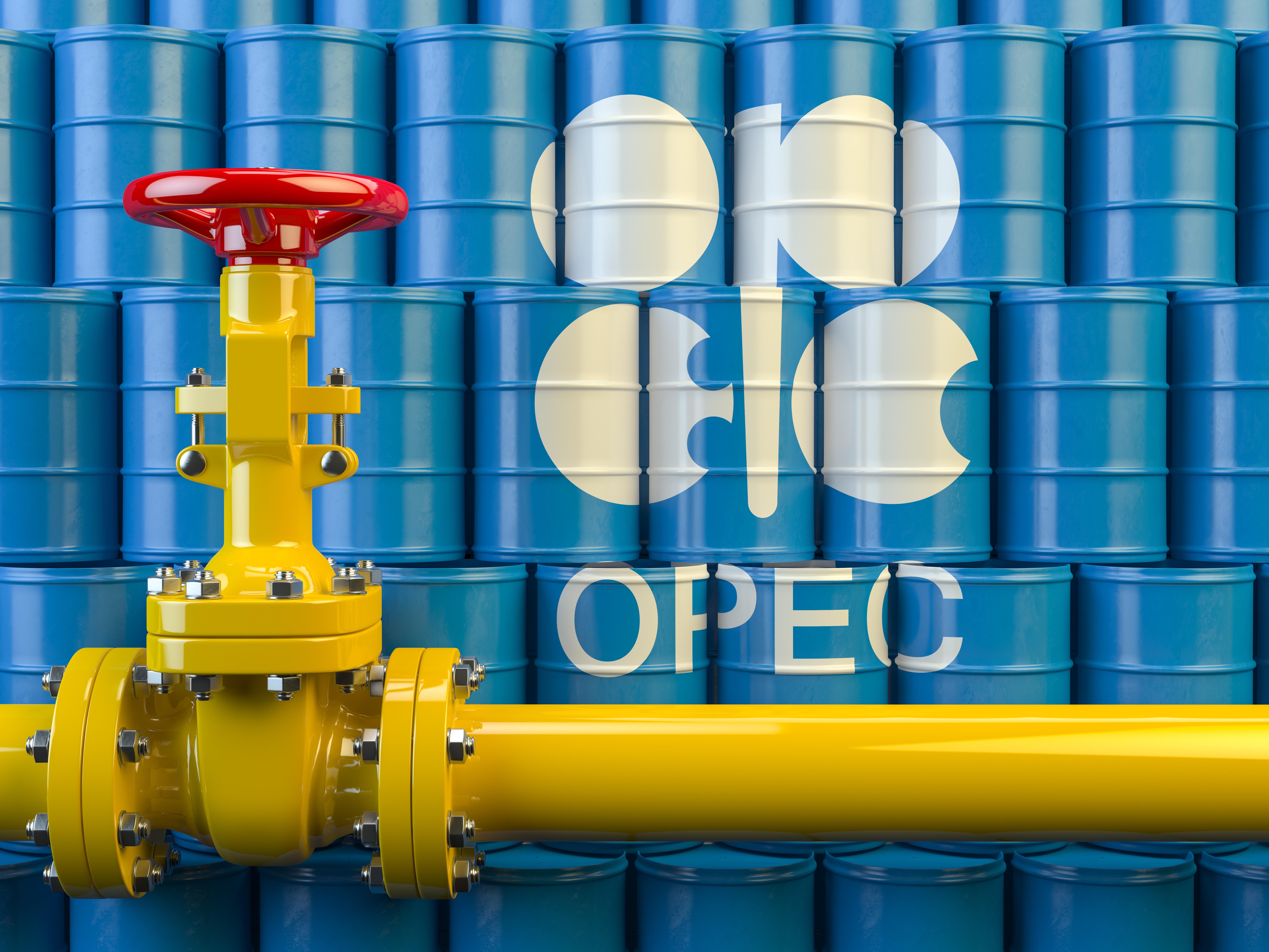 OPEC. Shutterstock