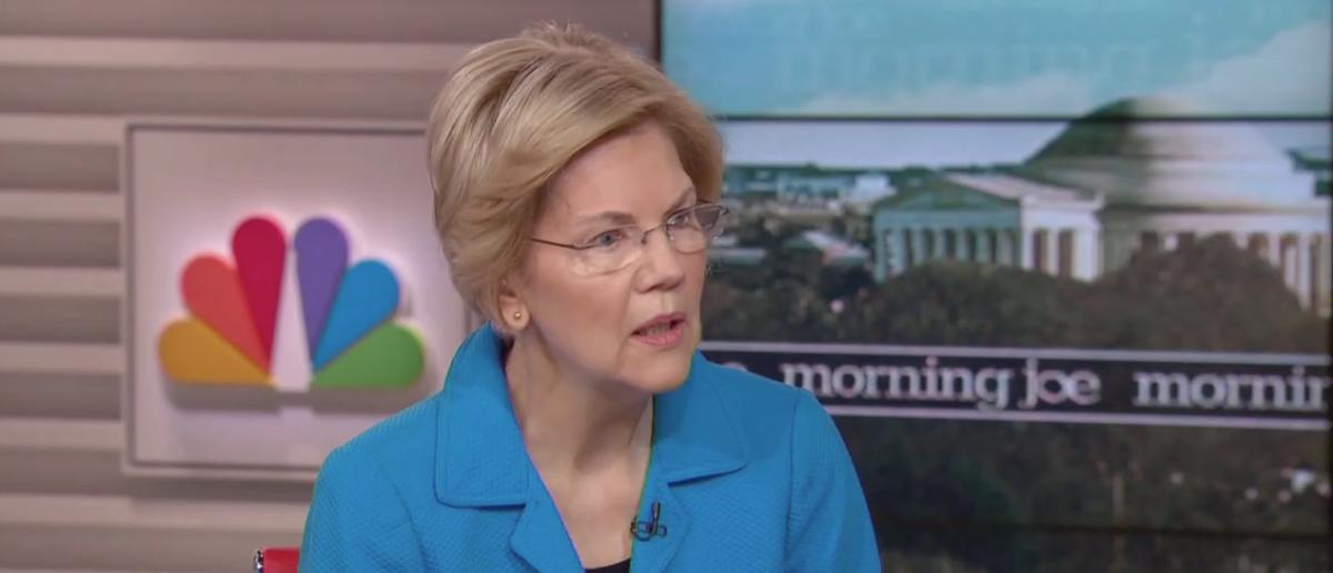 Sen. Elizabeth Warren (MSNBC Screenshot: March 13, 2019)