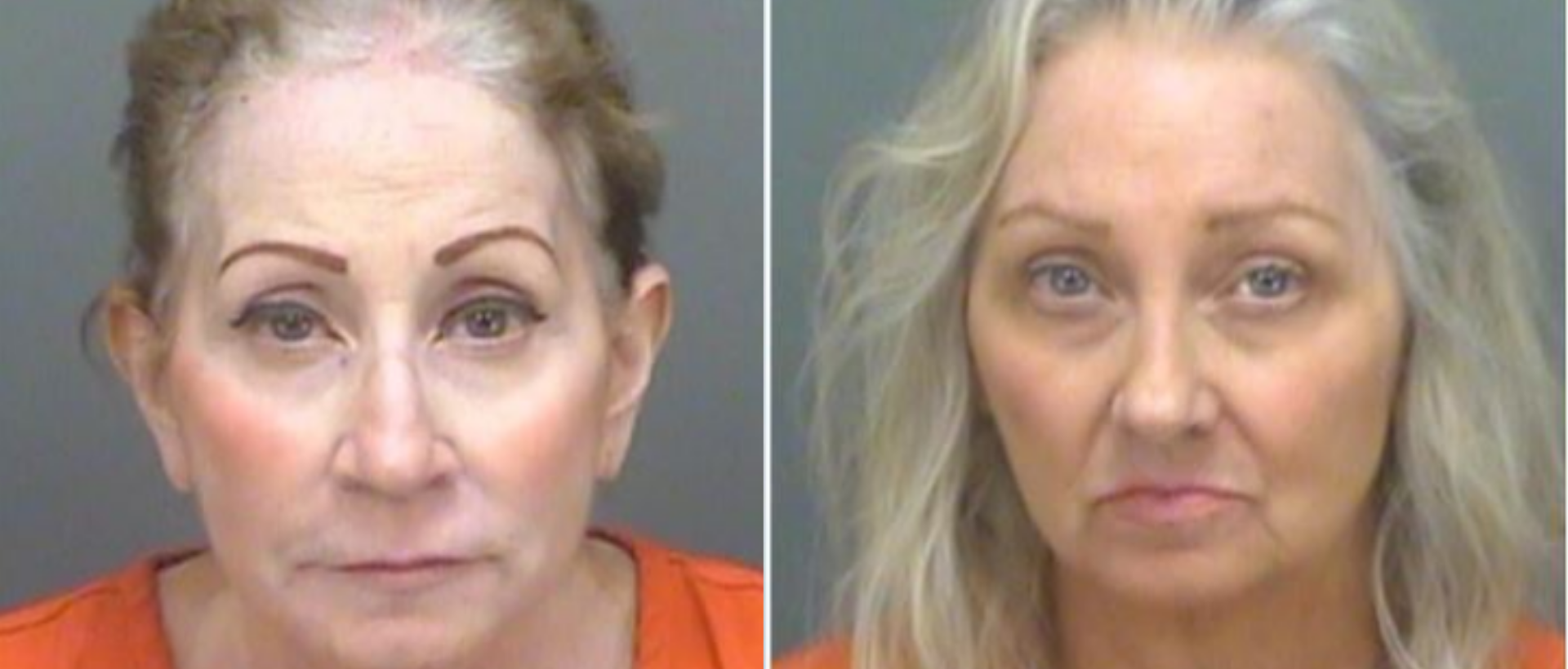 Sisters Murder 85 YO Father Obtained from Pinellas County Sheriff's Office