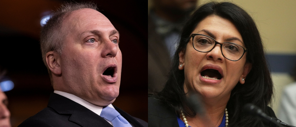 House Minority Whip Steve Scalise is anti-BDS, while Rep. Rashida Tlaib is pro-BDS. Drew Angerer/Getty Images and Alex Wong/Getty Images