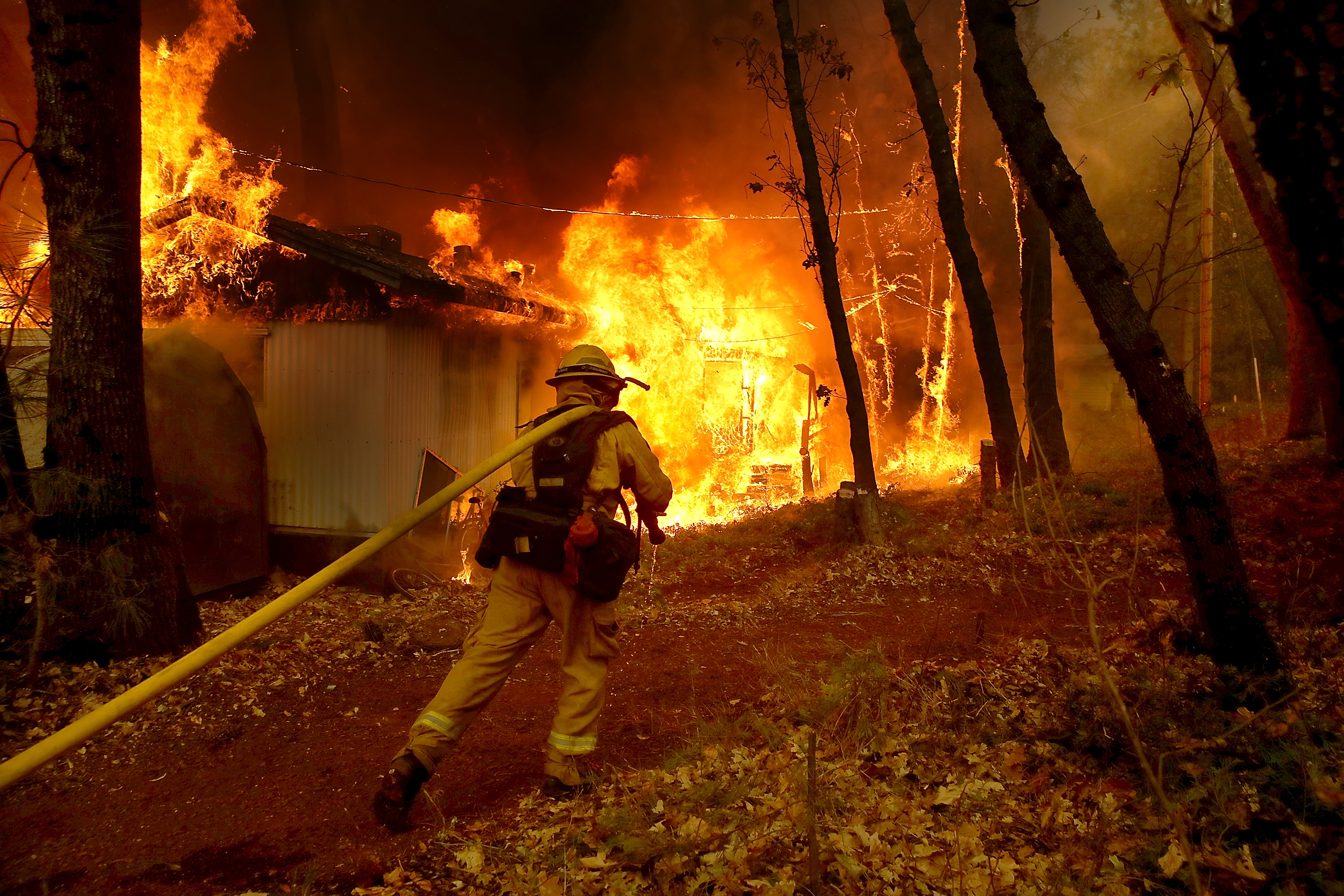 MAGALIA, CA - NOVEMBER 09: A Cal Fire firefighter pulls a hose towards a burning home as the Camp Fire moves through the area on November 9, 2018 in Magalia, California. Fueled by high winds and low humidity, the rapidly spreading Camp Fire ripped through the town of Paradise and has quickly charred 70,000 acres and has destroyed numerous homes and businesses in a matter of hours. (Photo by Justin Sullivan/Getty Images)
