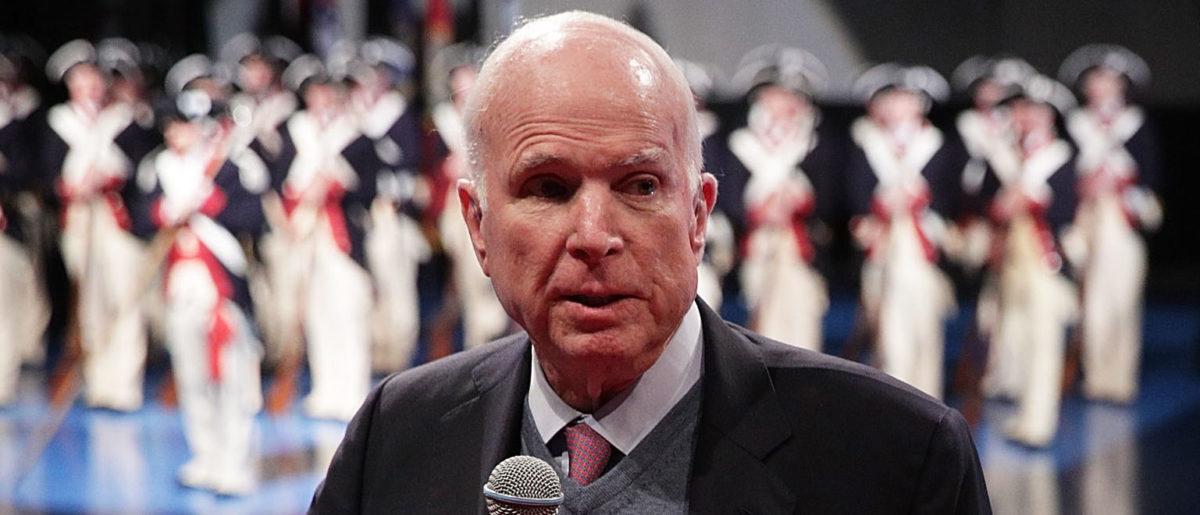 John McCain's Pup Died In Freak Accident