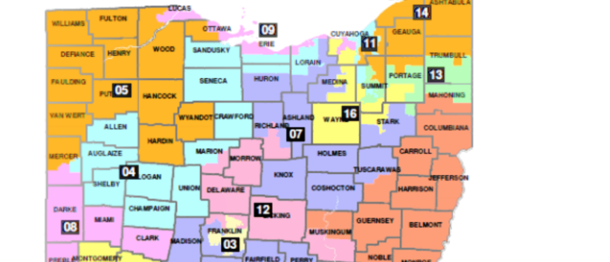 Ohio's congressional district map. (Screenshot/Philip Randolph Institute v. Householder opinion)