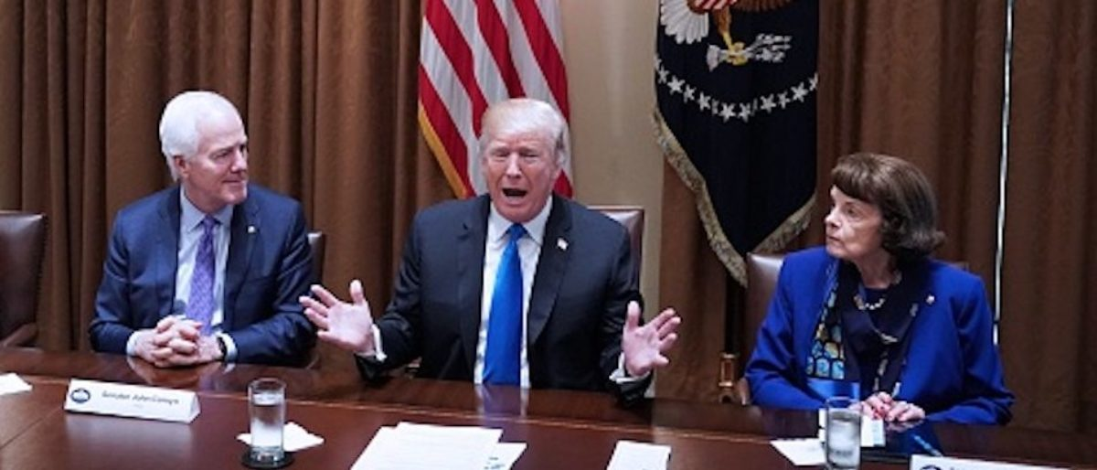 U.S. President Donald Trump speaks during a meeting with bipartisan members of Congress on school and community safety in the Cabinet Room of the White House on Feb. 28, 2018 in Washington, D.C. (MANDEL NGAN/AFP/Getty Images)
