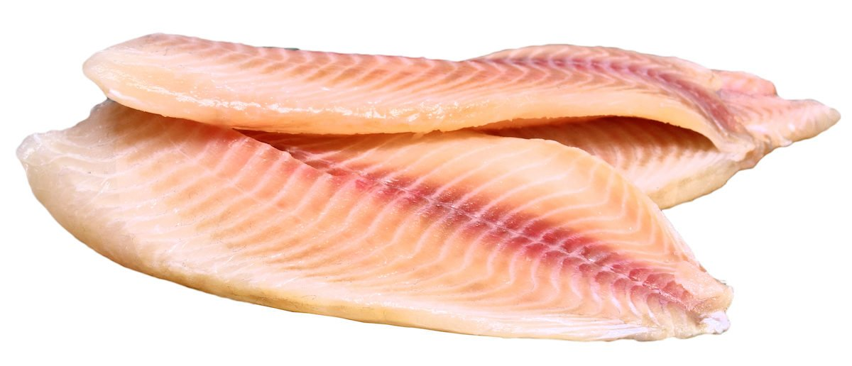 Trans Woman Gets A Tilapia Vagina. Yes, You Read That Correctly