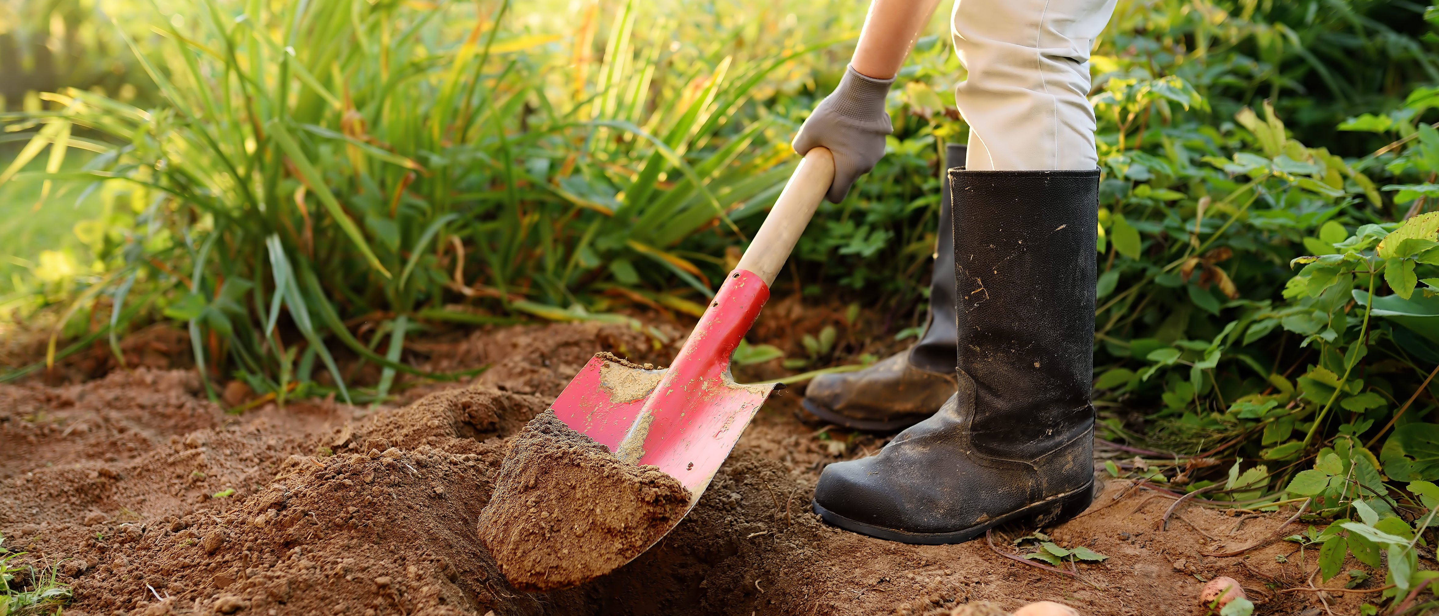 An Arizona man allegedly buried his 97-year-old mom in the backyard so that he could continue collecting her benefits, police say. (Maria Sbytova/Shutterstock)