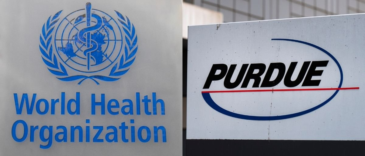 A bipartisan report from the offices of Reps. Katherine Clark and Hal Rogers demanded answers from the World Health Organization because of its ties to Purdue Pharma May 22, 2019. Michael Passet and Drew Angerer/Getty Images