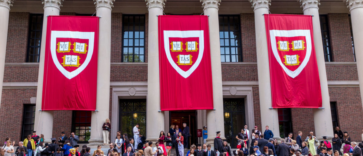 COULTER: Want To Get In Harvard Without Good Test Scores? Become A Liberal Activist
