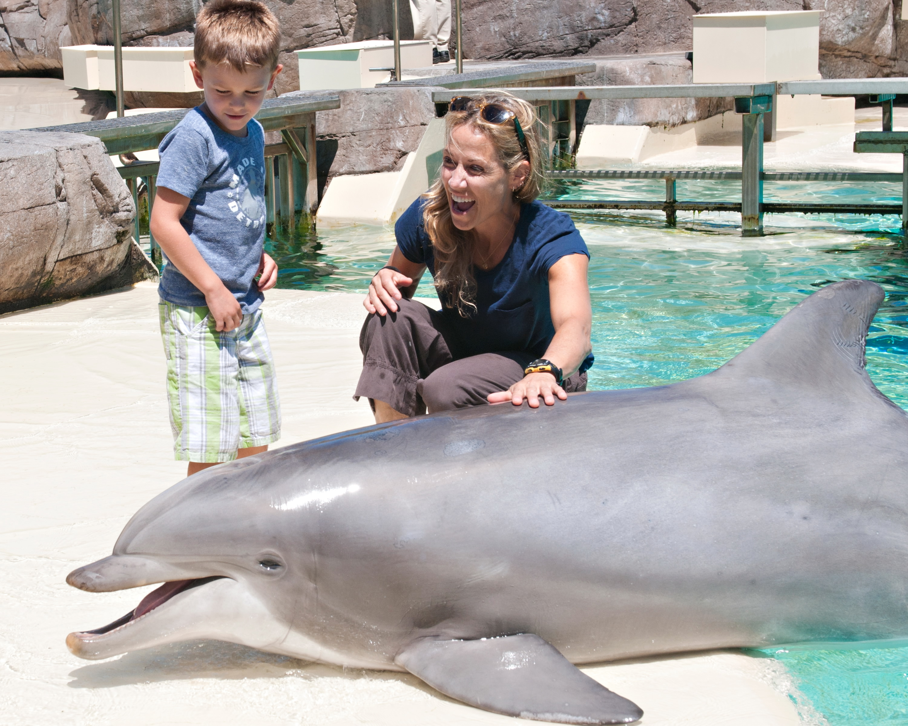 Singer/songwriter Sheryl Crow makes a new friend in Steime, a 22-year-old bottlenose dolphin, at SeaWorld San Diego on July 26, 2012 in San Diego, California. (Mike Aguilera/SeaWorld San Diego via Getty Images)