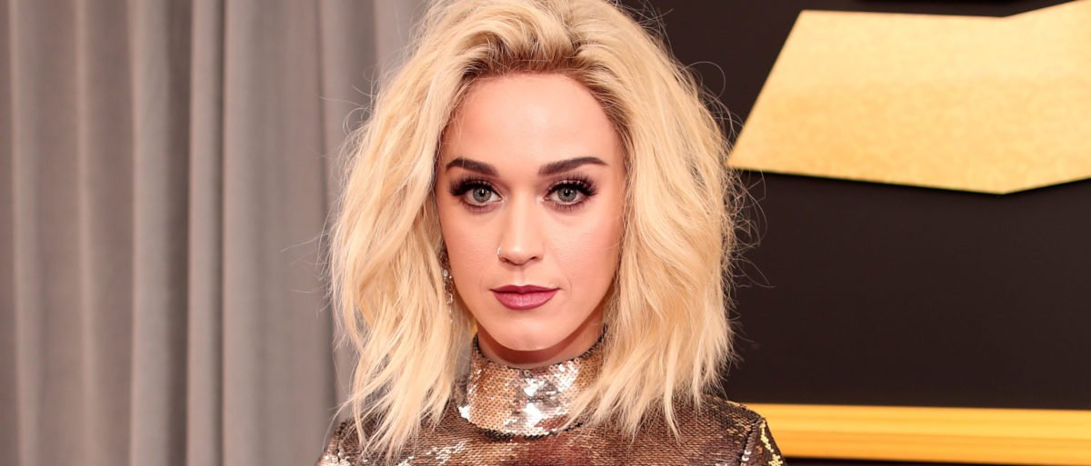 Katy Perry Accused Of Exposing A Male Model At A Party