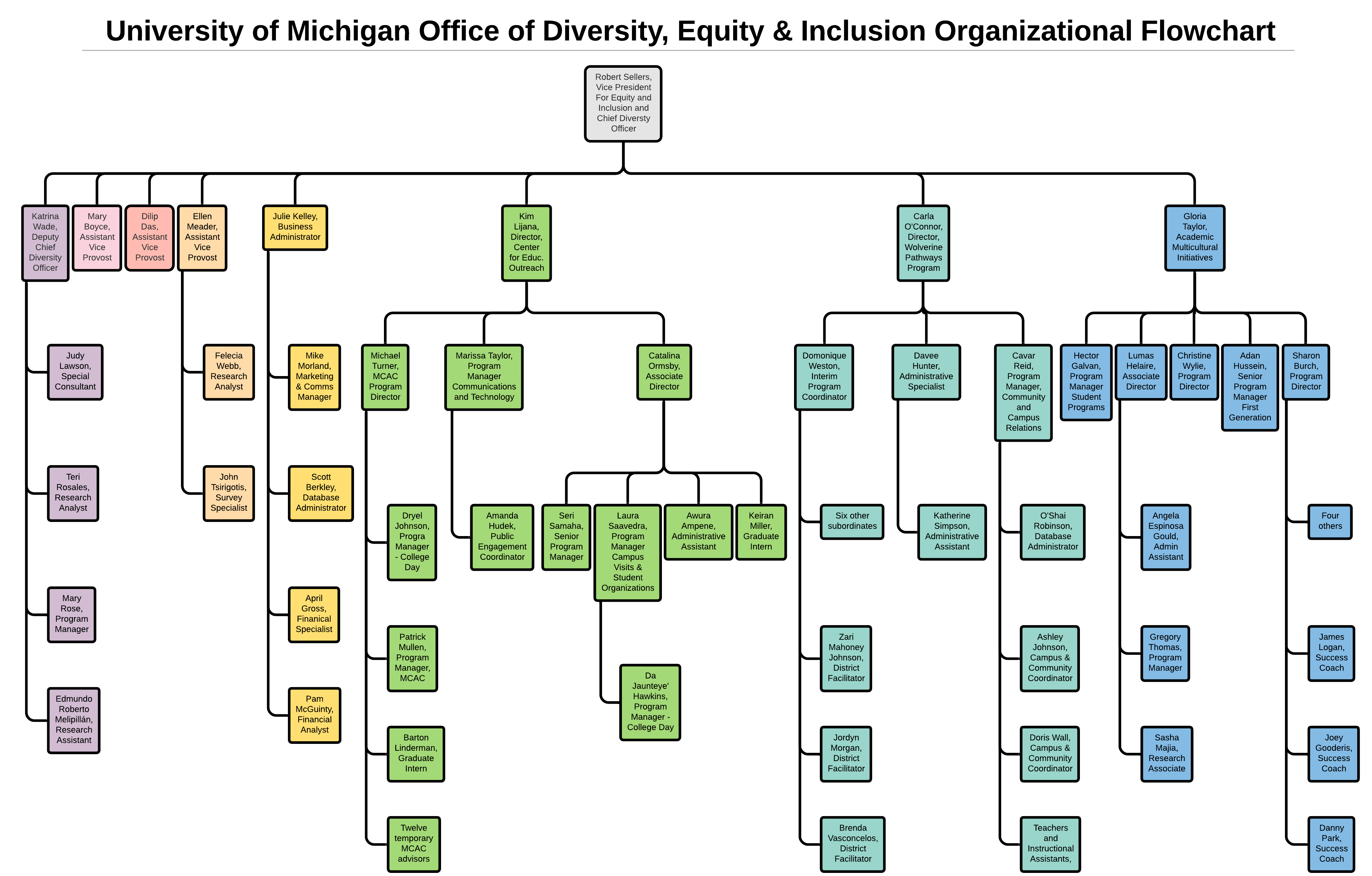 This is the organizational flowchart of the University of Michigan Office of Diversity, Equity & Inclusion. Not all 93 employees are included. (Daily Caller)