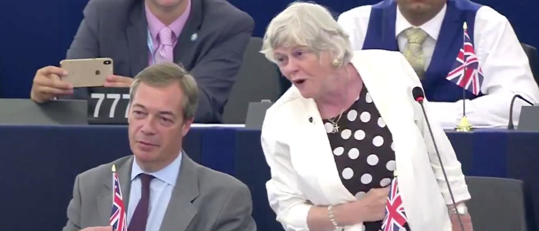 Ann Widdicombe delivers maiden speech at European Council. Screen Shot/Twitter/@BrexitParty_UK