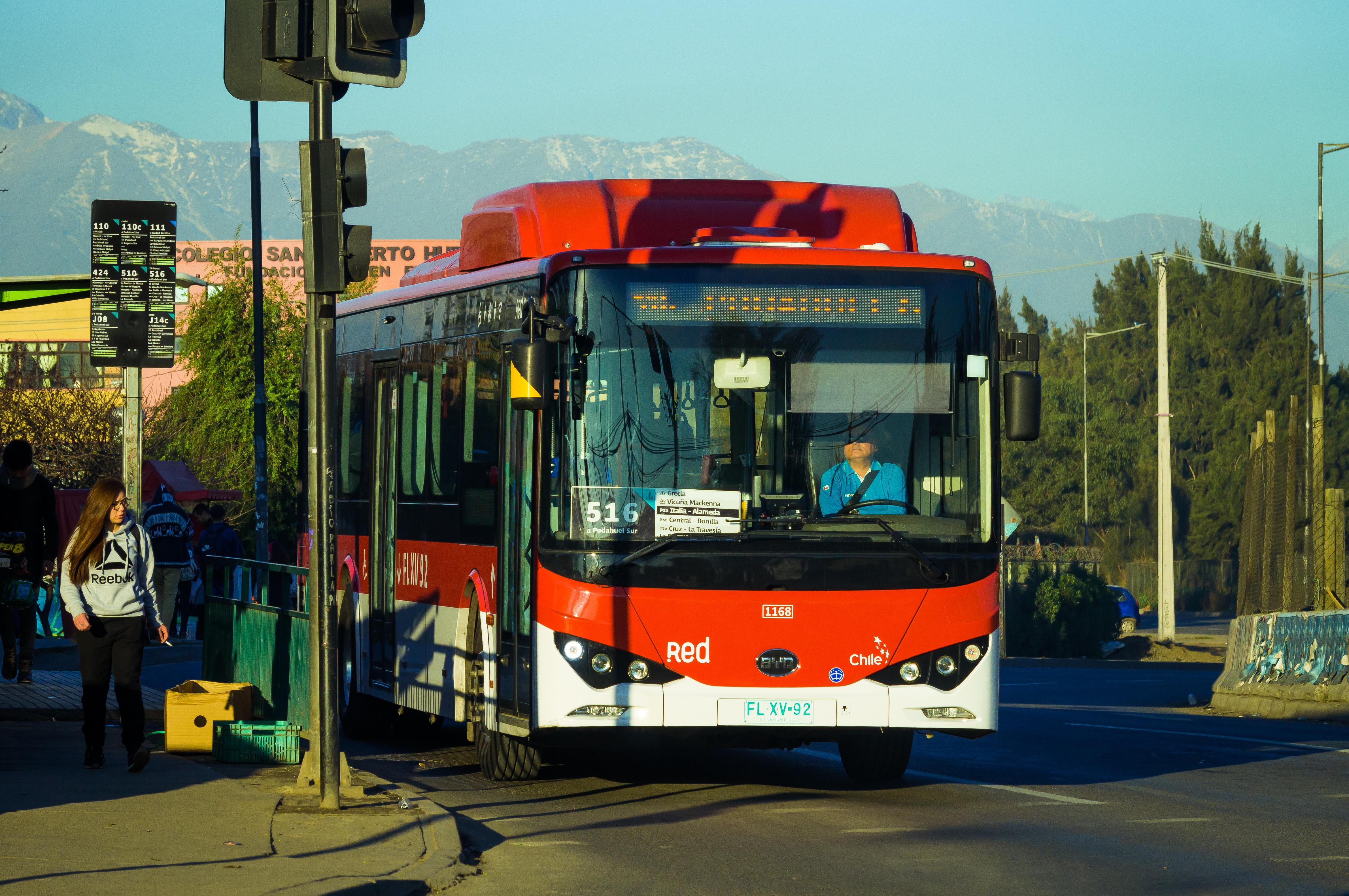 BYD bus/ Shuttertsock / By Cristian Silva Villalobos
