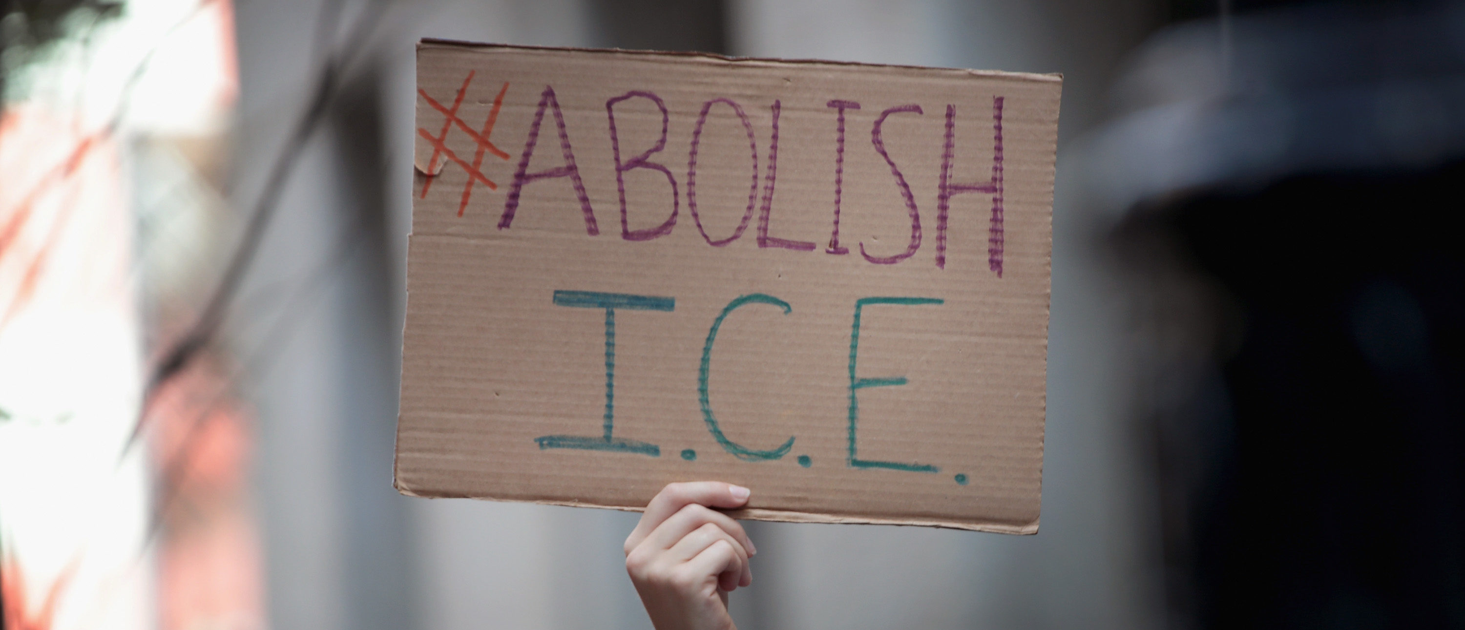 ICE Protesters Would Be Thanking Agents If They Studied The Issue, Former Chief Says