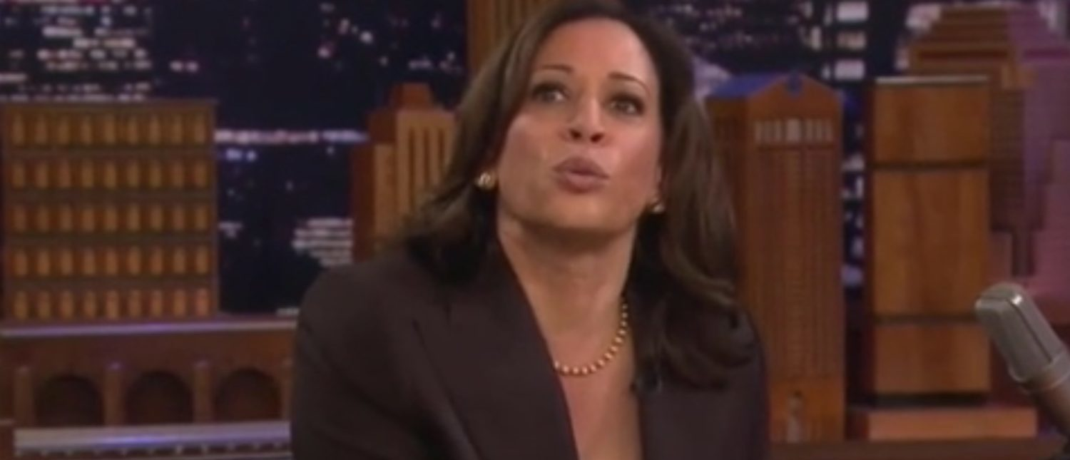 Kamala Harris Wants America's Assault Weapons — Would Force Sale To Feds
