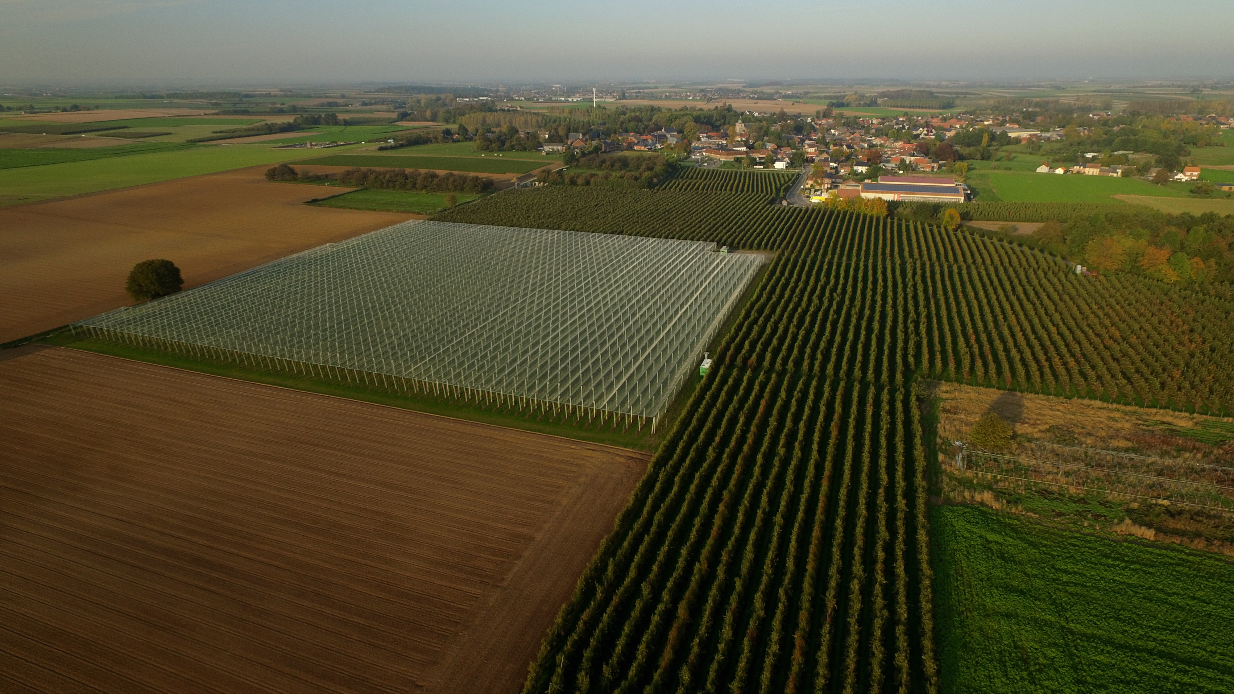 Aerial drone picture shows fruit farming greenhouses in Landen, Thursday 31 October 2019. (Photo by ERIC LALMAND/BELGA MAG/AFP via Getty Images)
